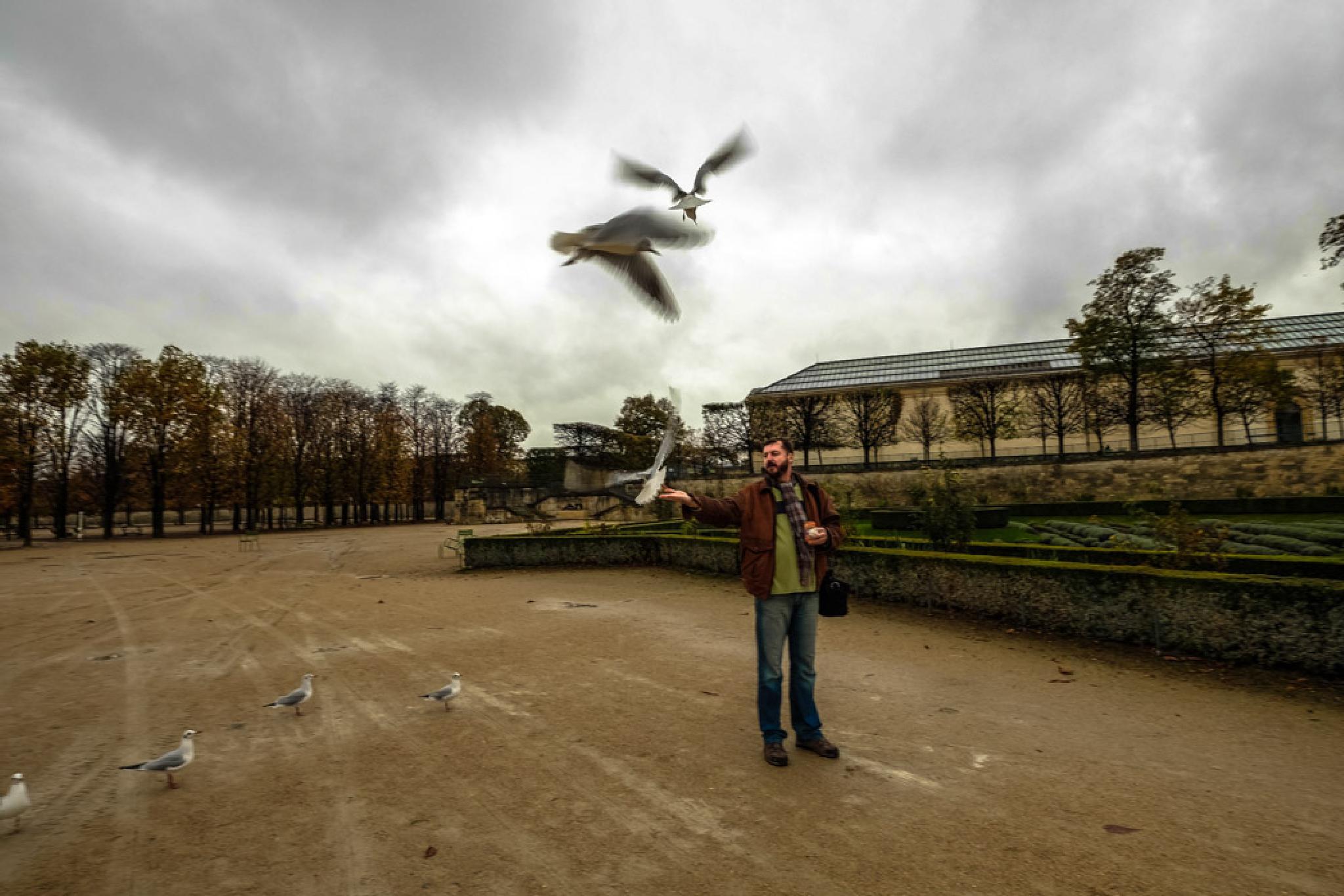 Untitled, Paris 2014 by dxbimran