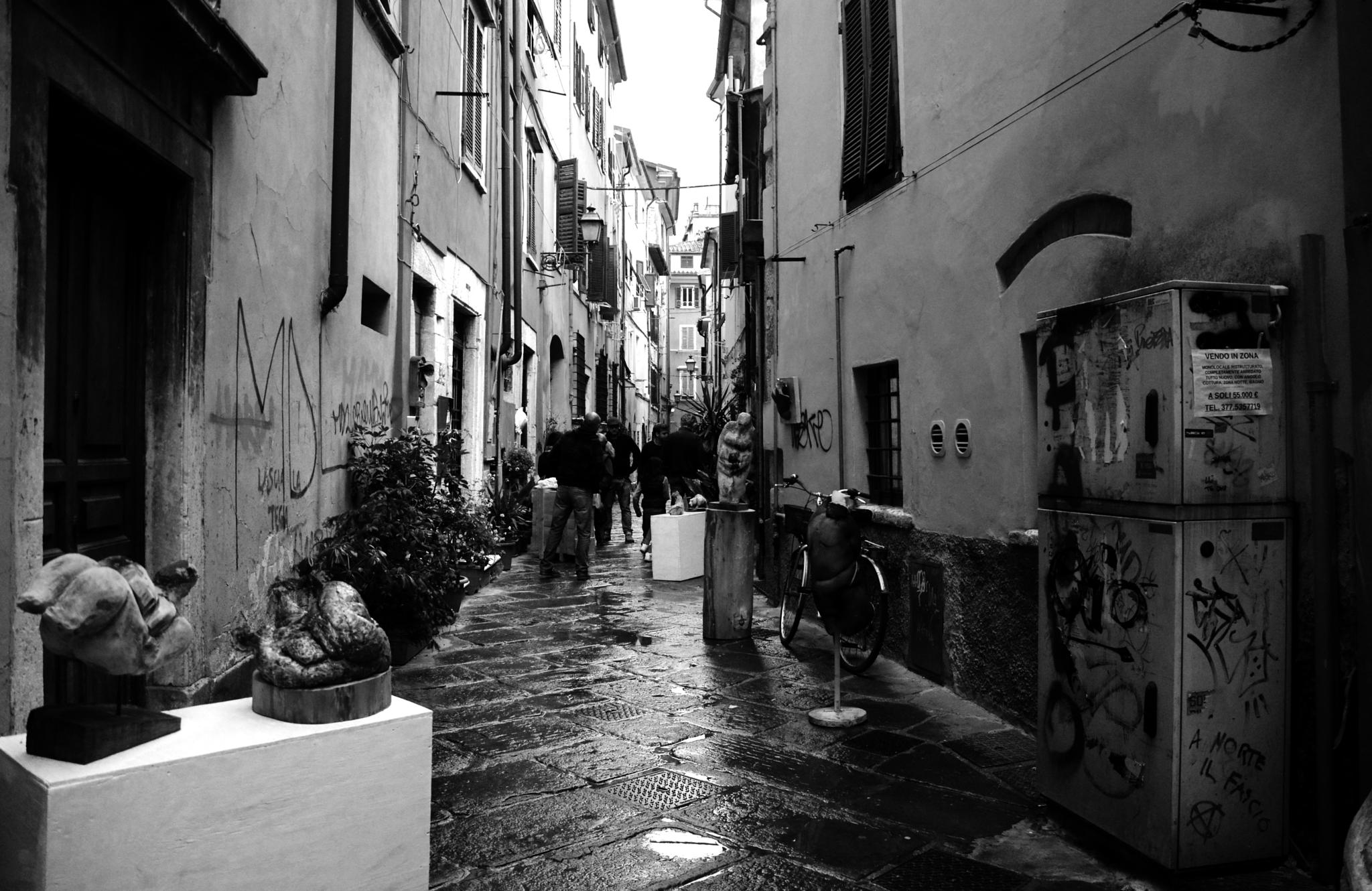 Untitled by ENRICA BIANCHI