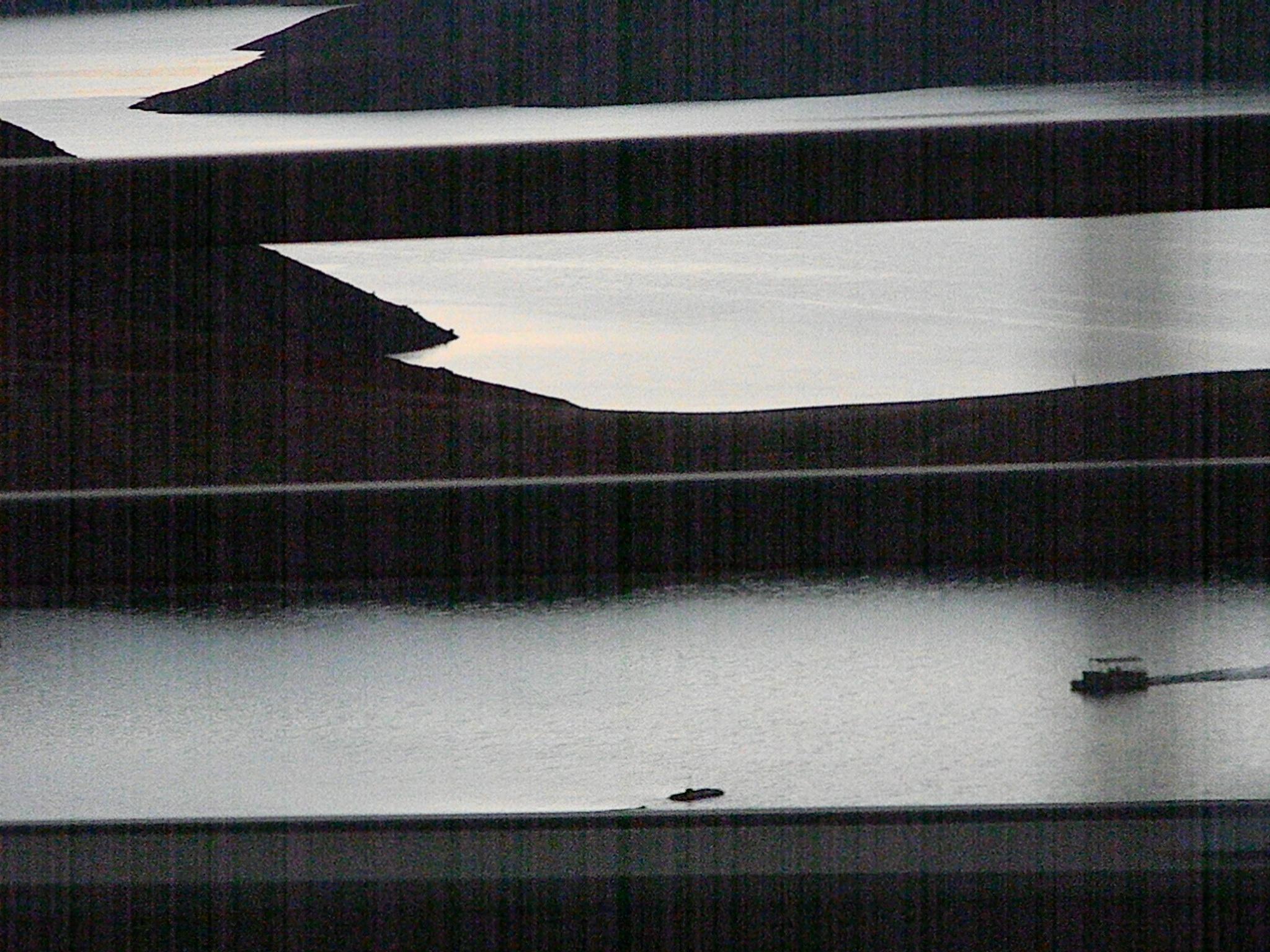 Shasta Lake 2 by joy.kilpatric