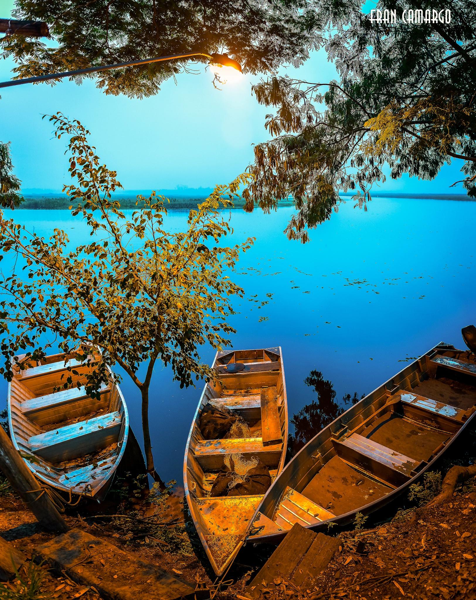 boats by Fran Camargo
