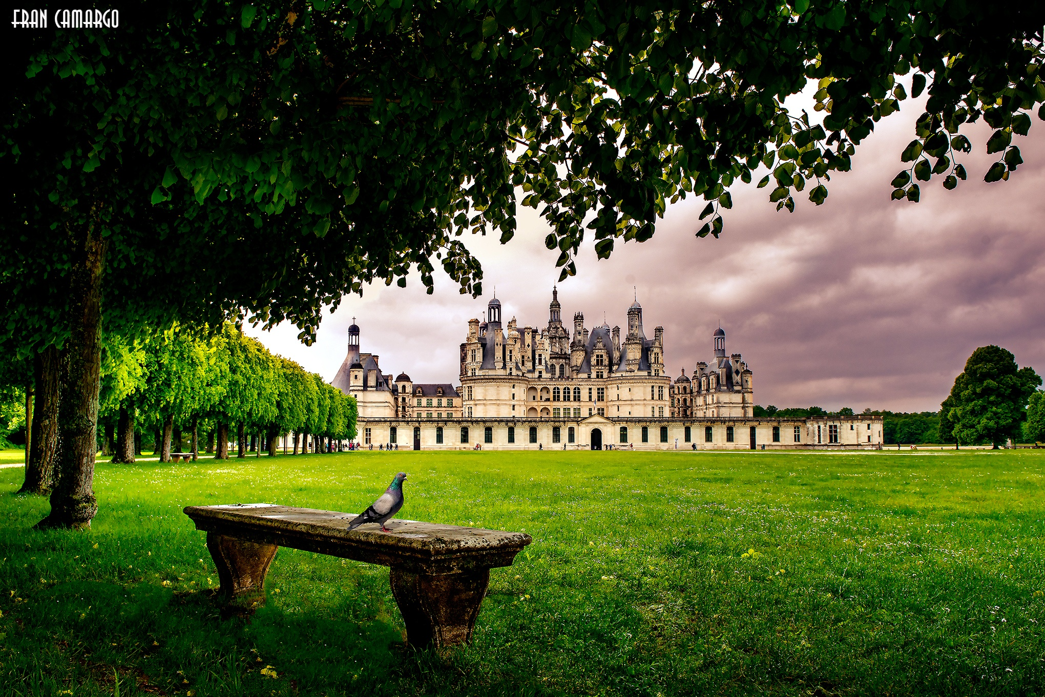 Chambord Castle by Fran Camargo