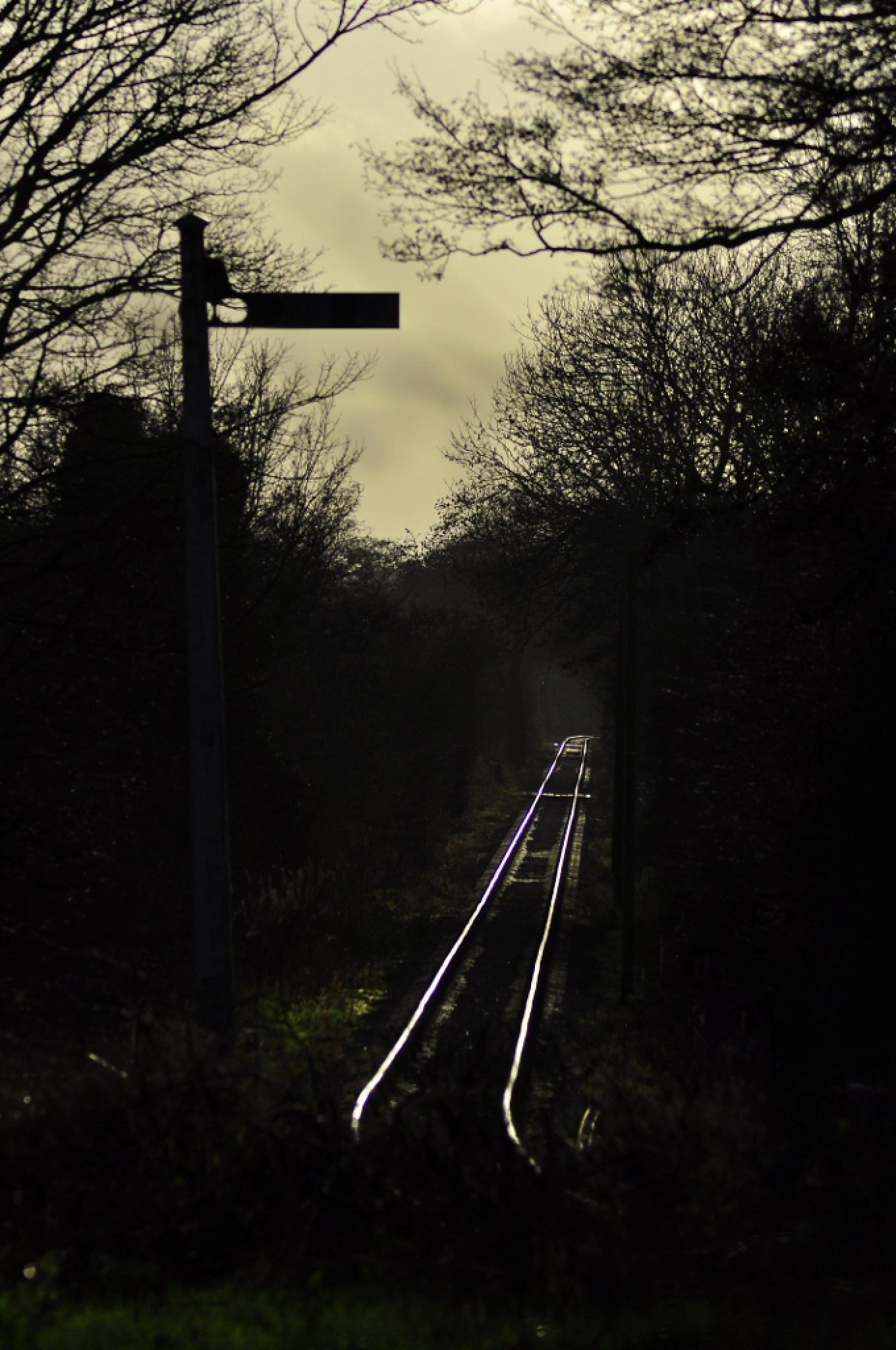 Down the line by Sidmouth