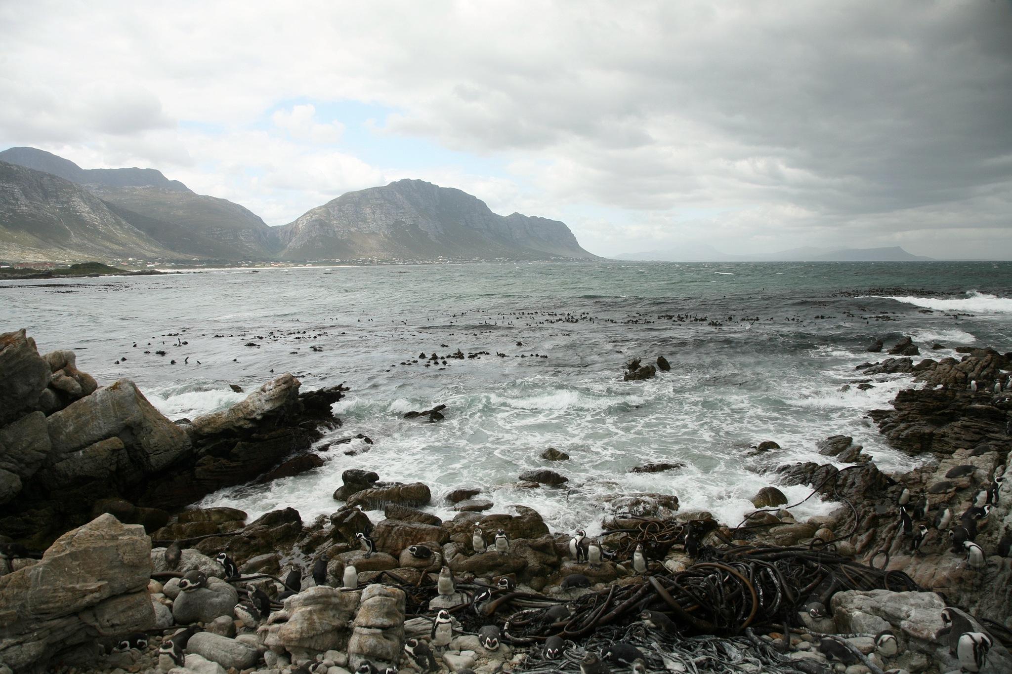 Shoreline  by annet.leenders.1