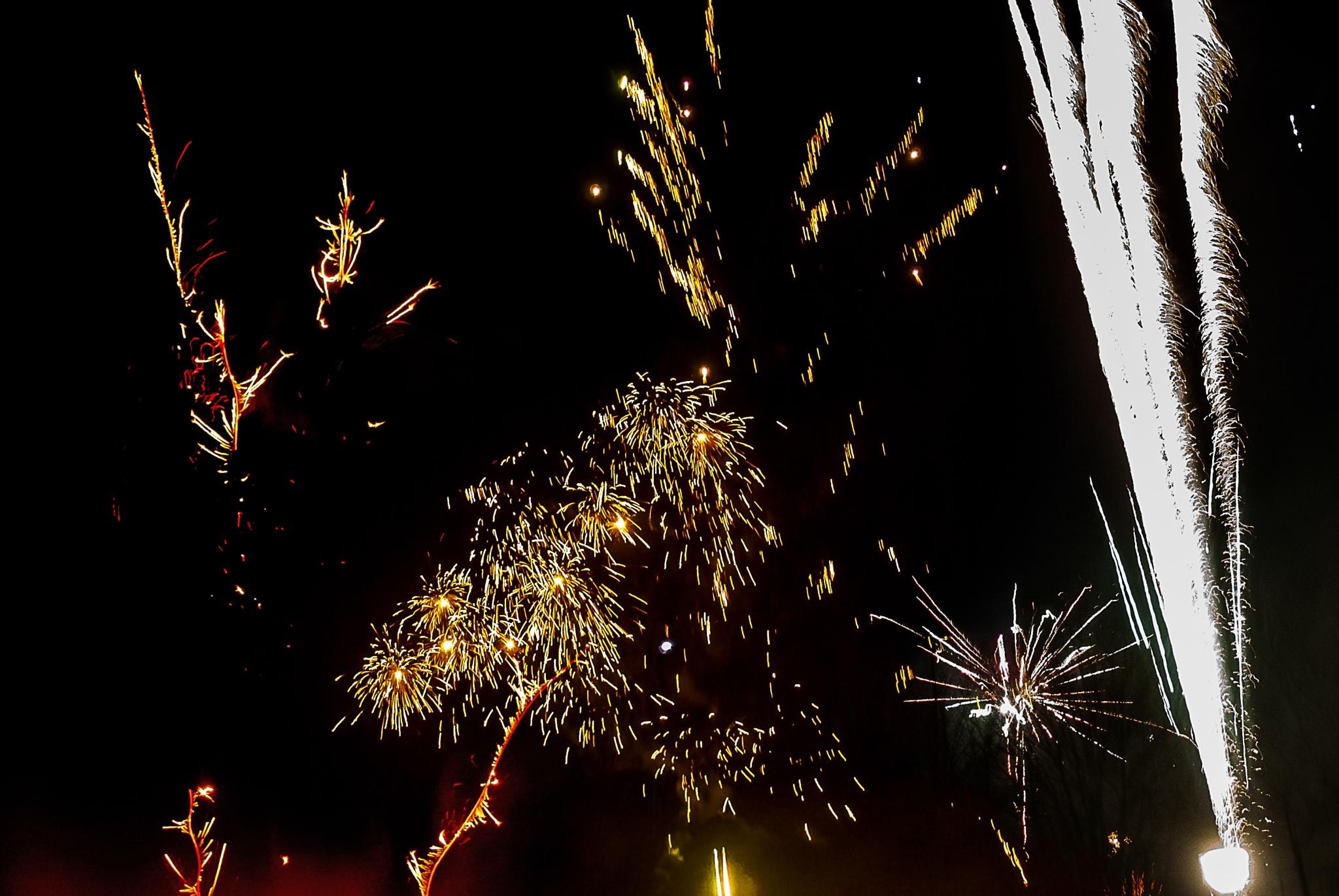 firework2 by Cor.G.  Amature Photographer