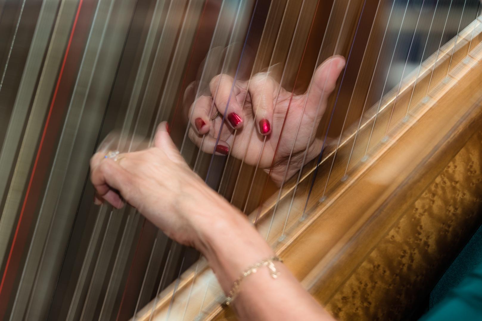 Dreams on my fingers by Joggie van Staden