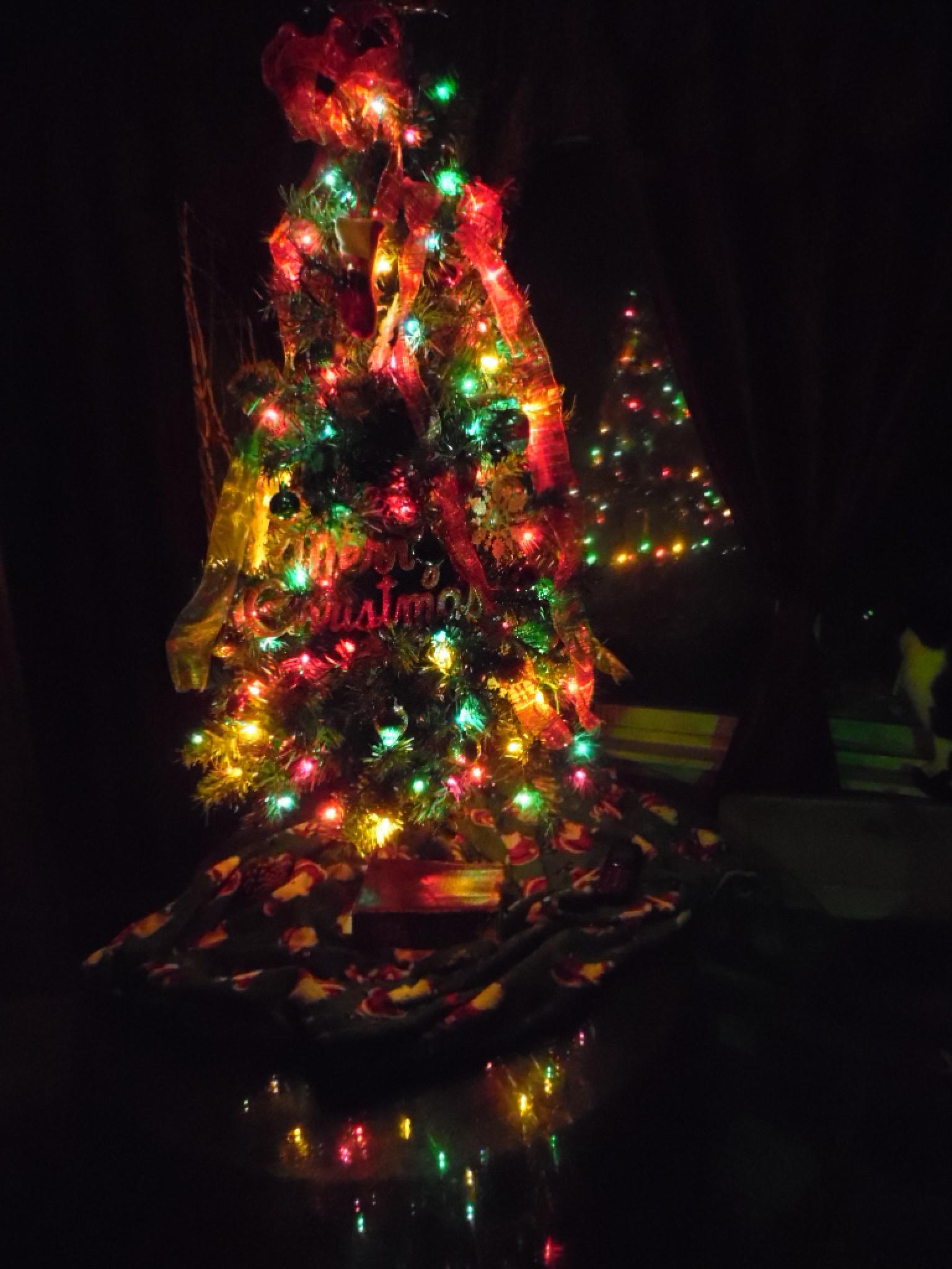 Merry Christmas by hardworkinmom