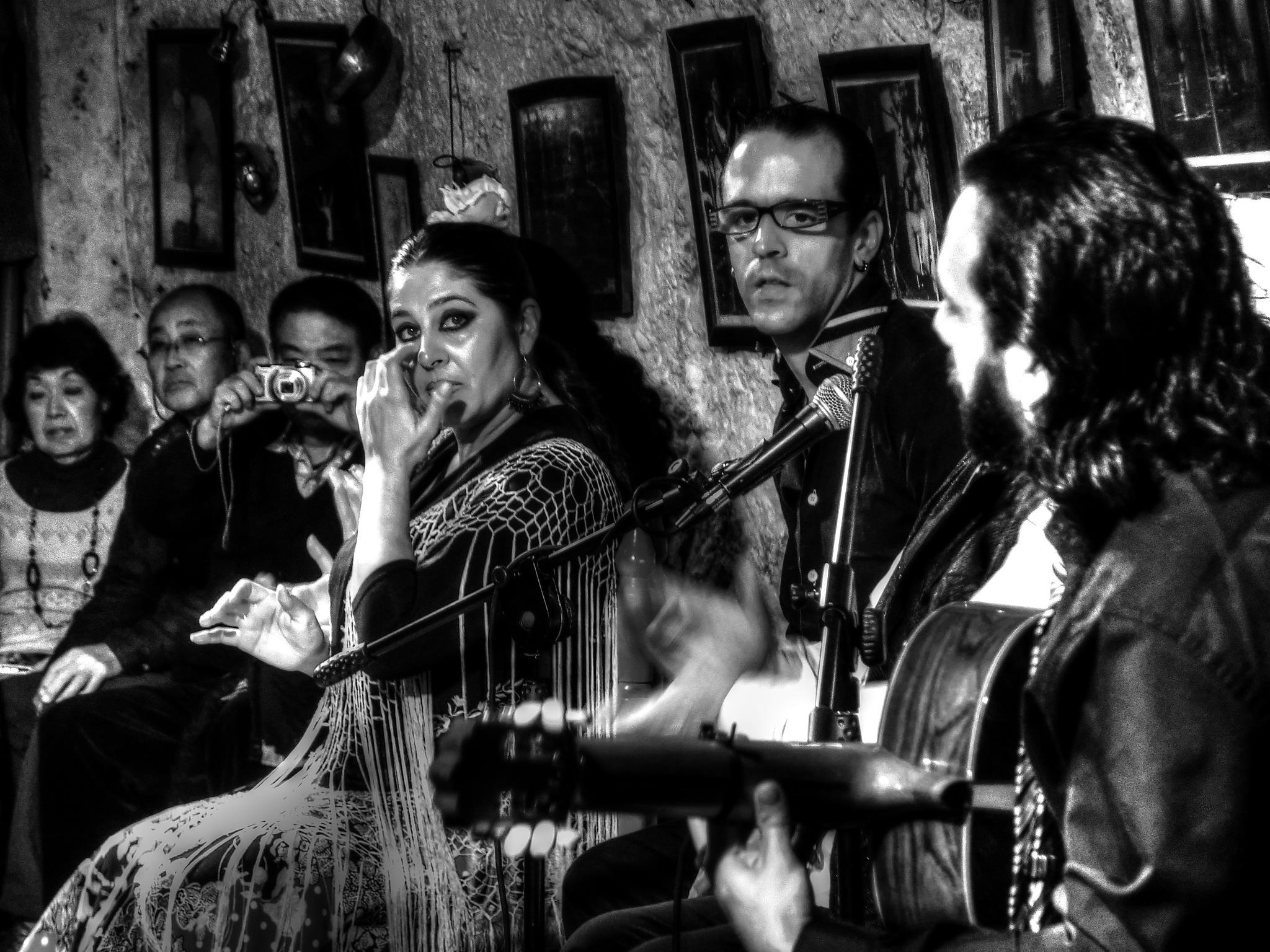 Flamenco by SteveR