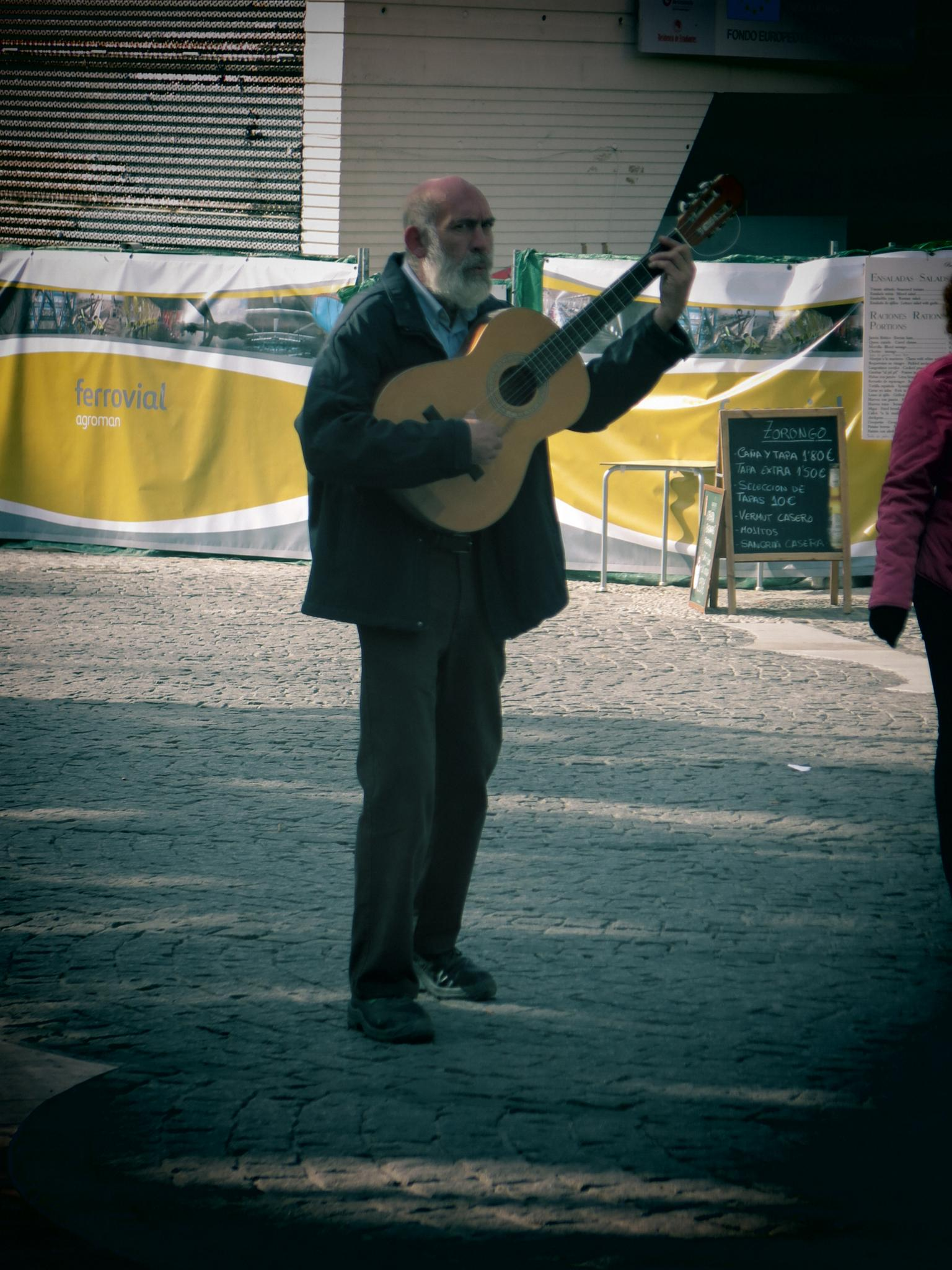The Troubadour  by SteveR