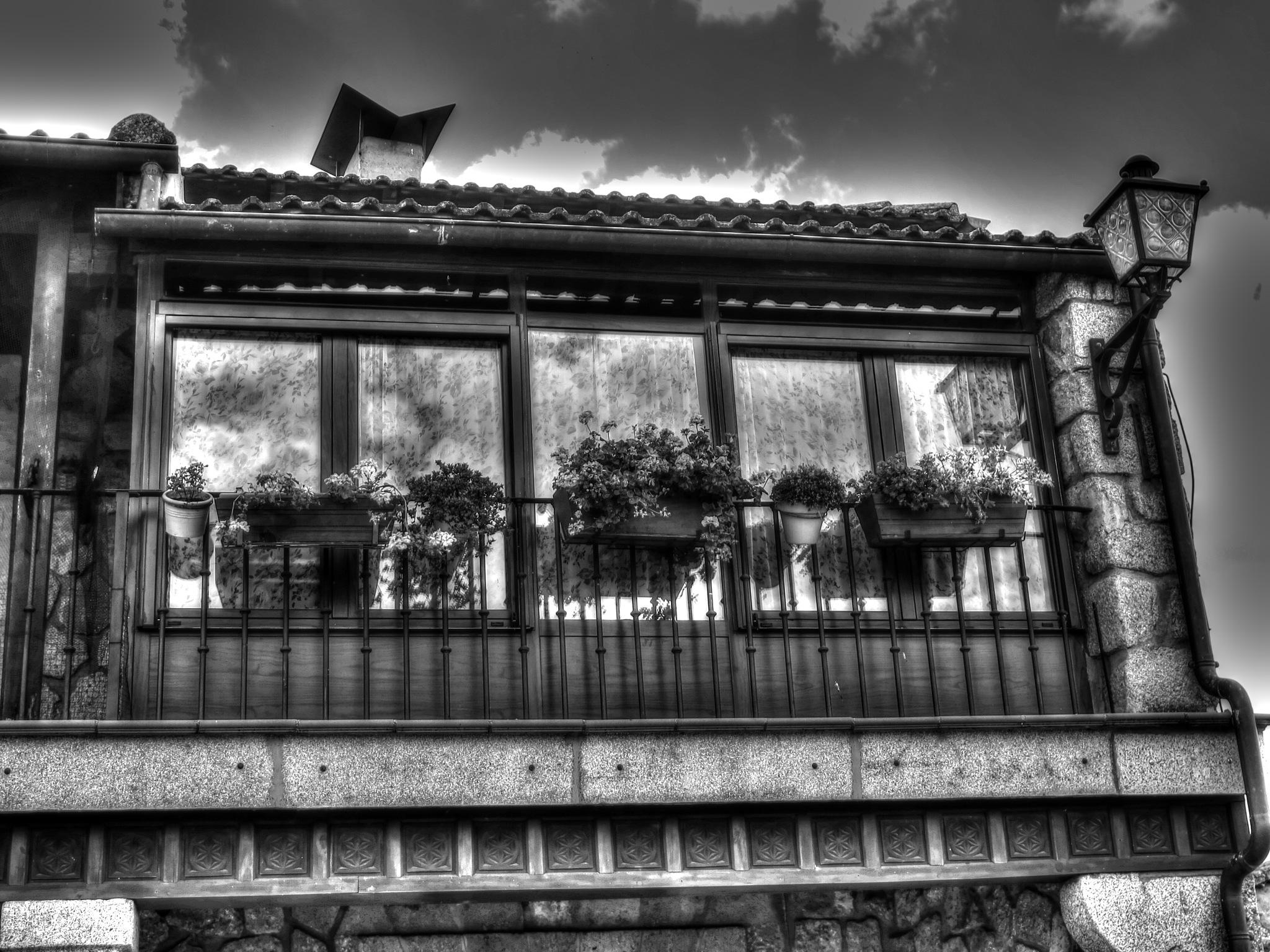In Old Ledesma #11 by SteveR