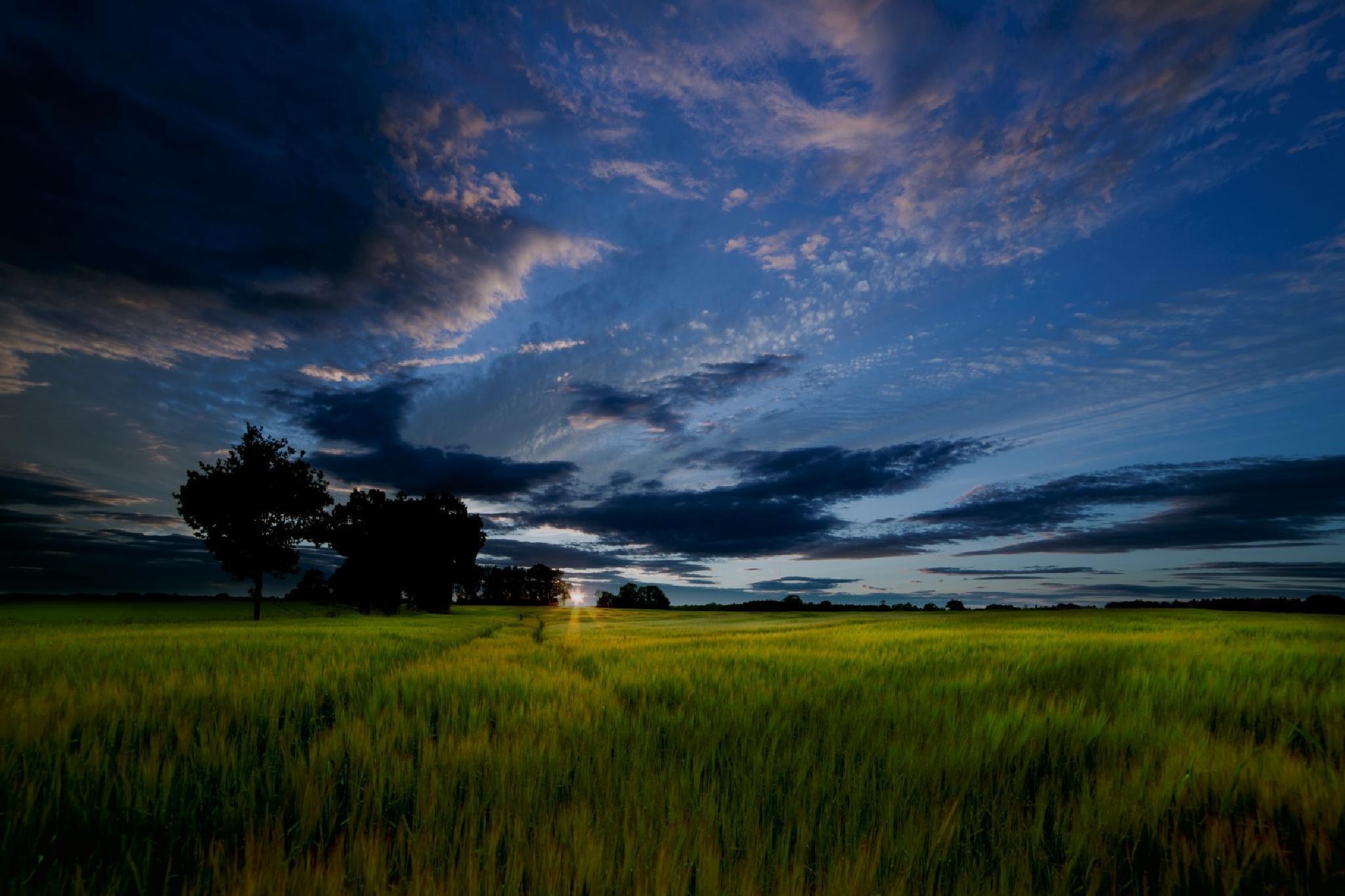 Sunset over Gunton Park by DuncanArnold