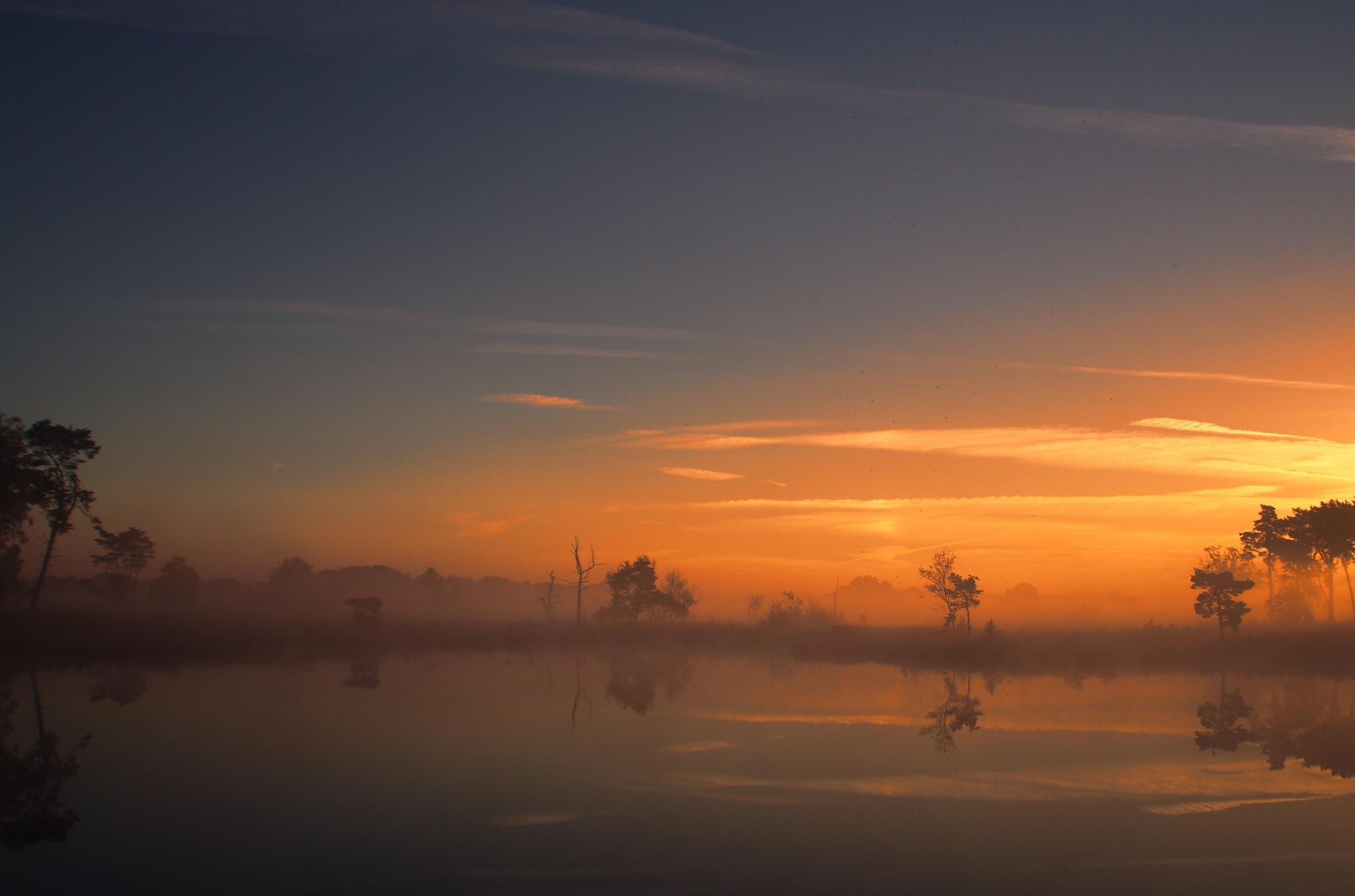 Colors in the morning XIII by Watze D. de Haan