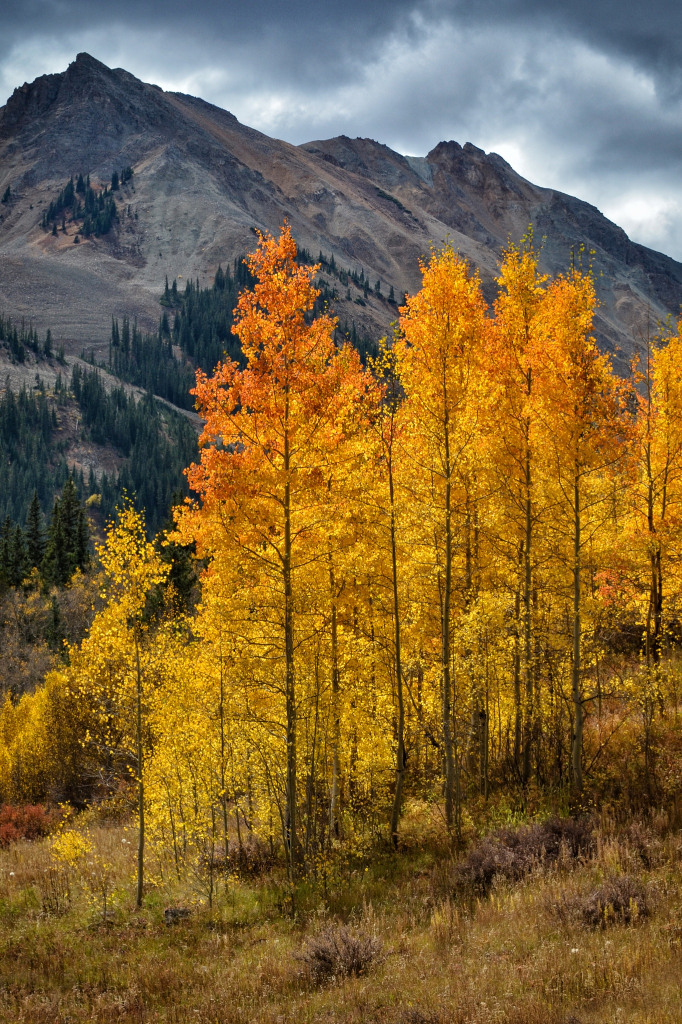 Fall Fire by gabrial