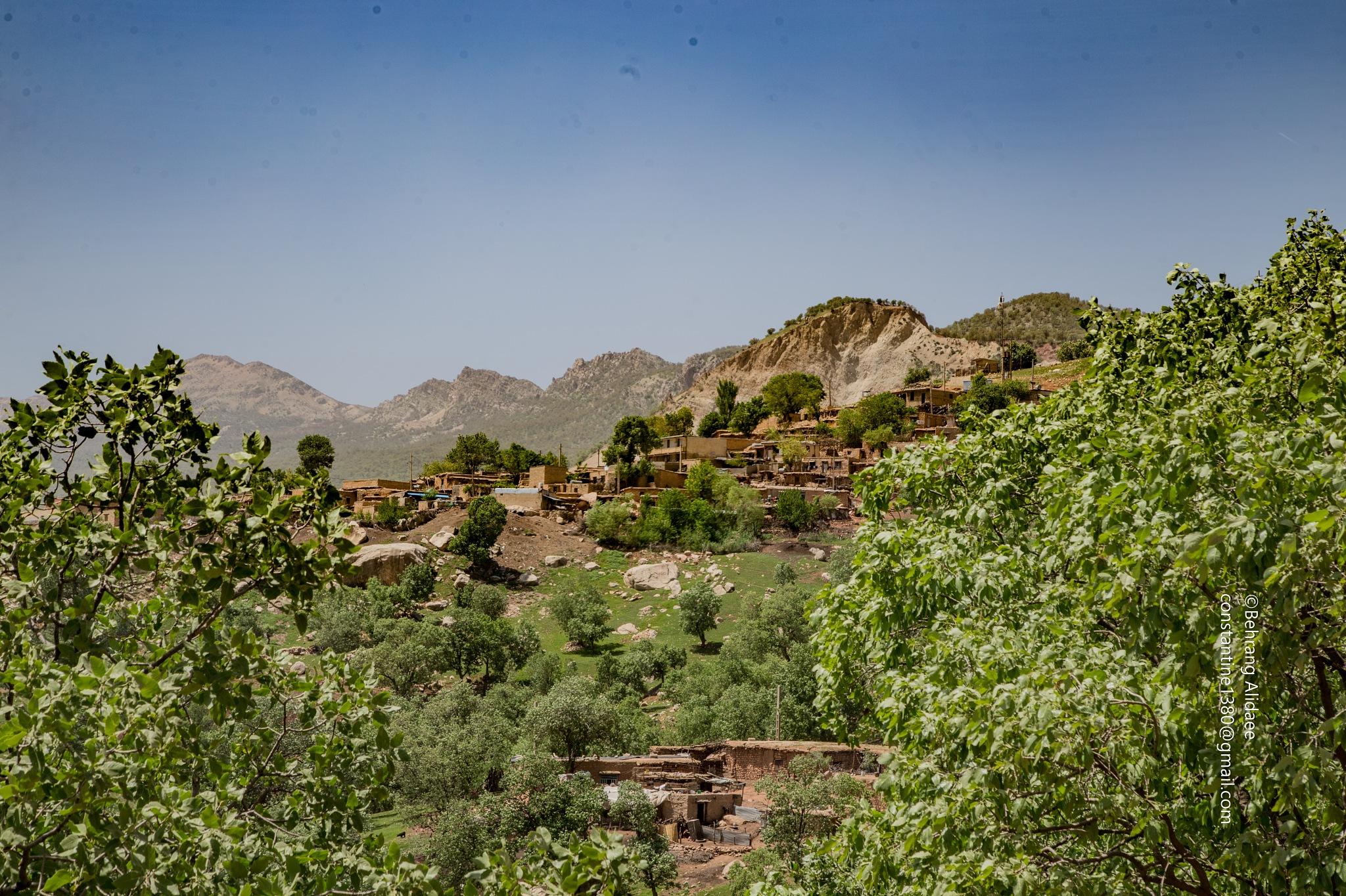 Village by Behrang Alidaee