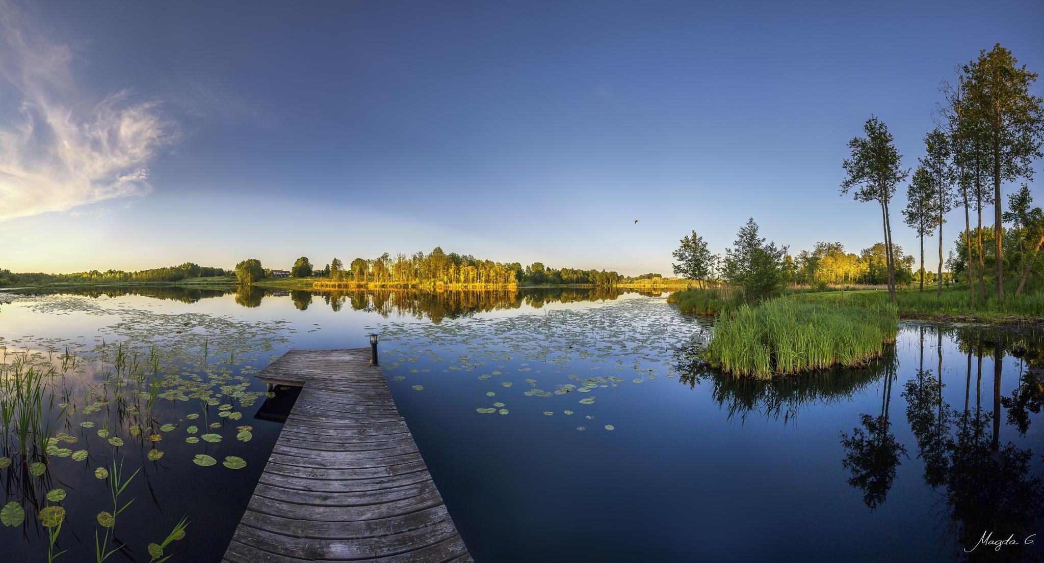 Midsummer  by Magda Grigonienė