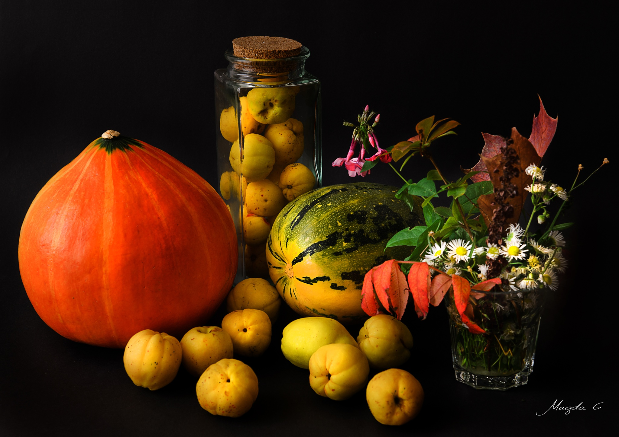 Pumpkin & Co. by Magda Grigonienė