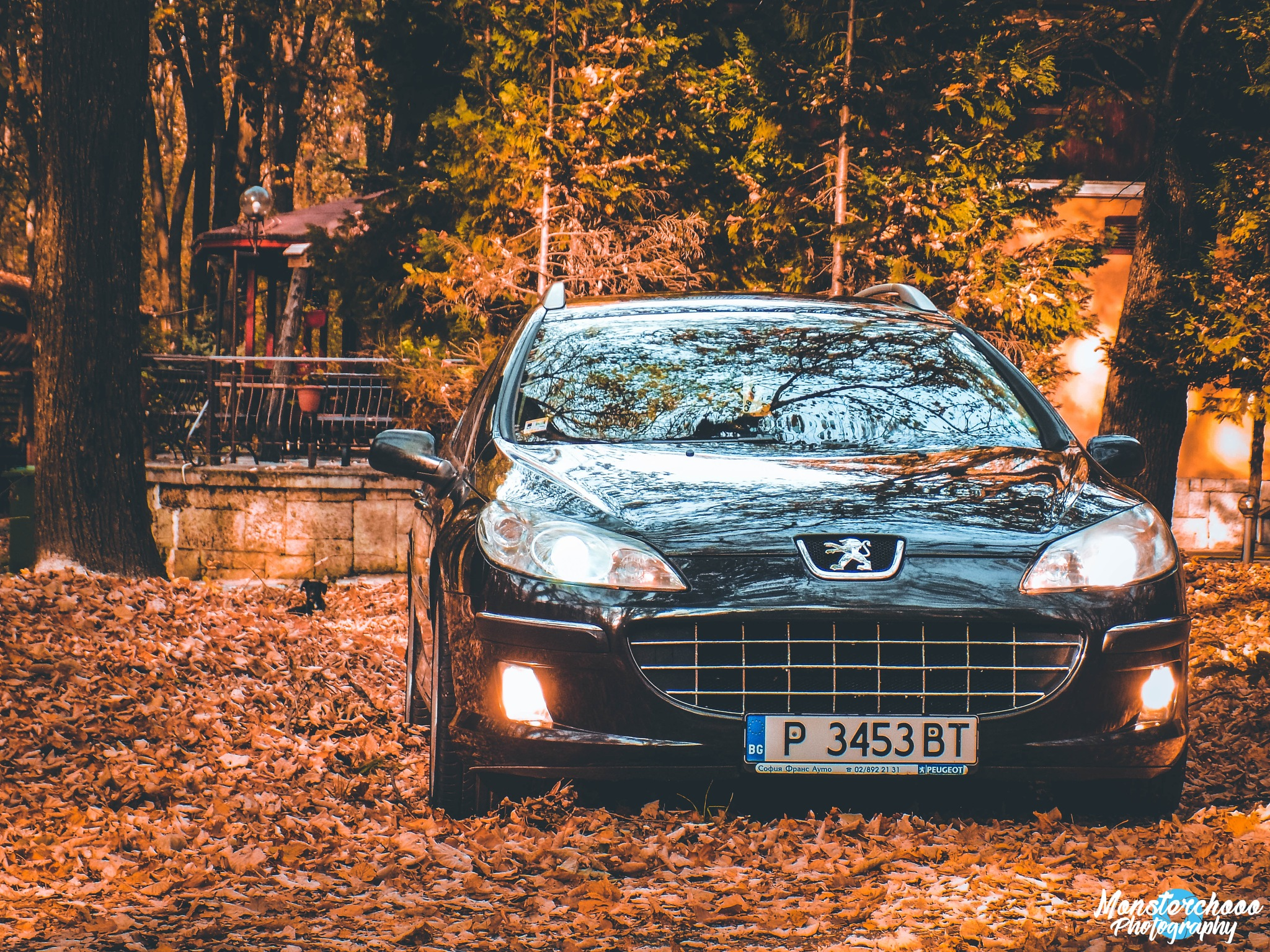 Peugeot autumn by Photography by Monsterchooo