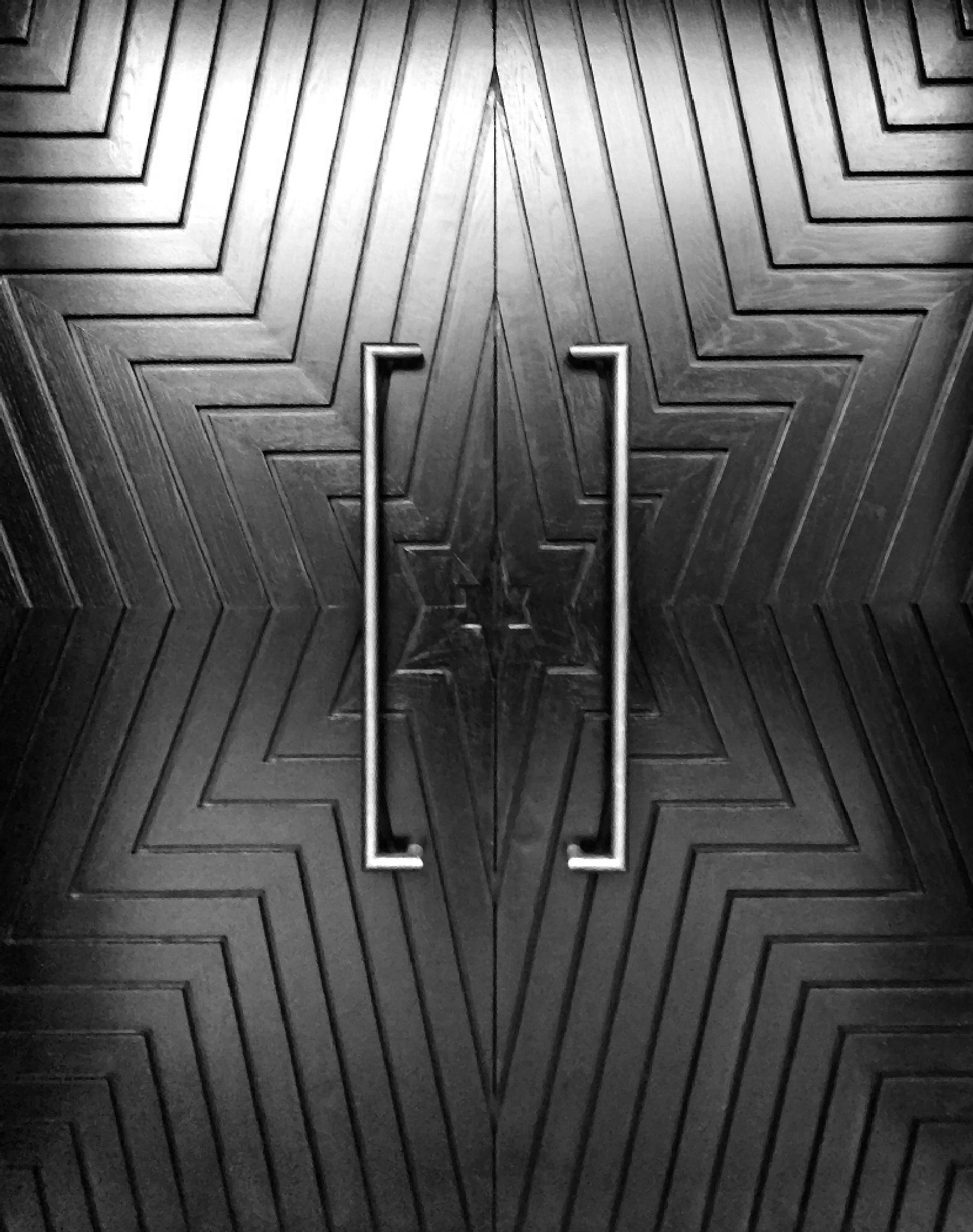 Black Star Doors  by Steven Best