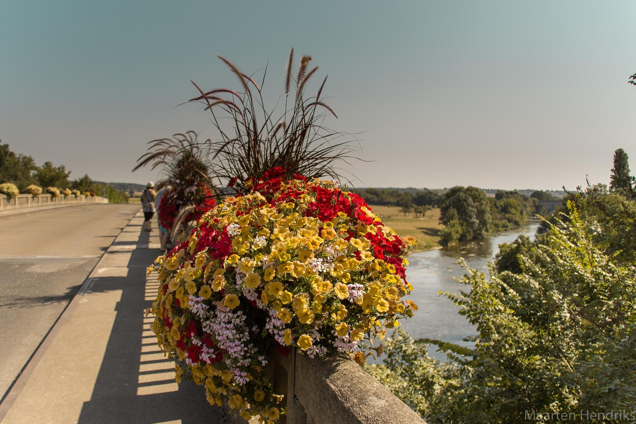 flowers on a bridge by Maarten Hendriks