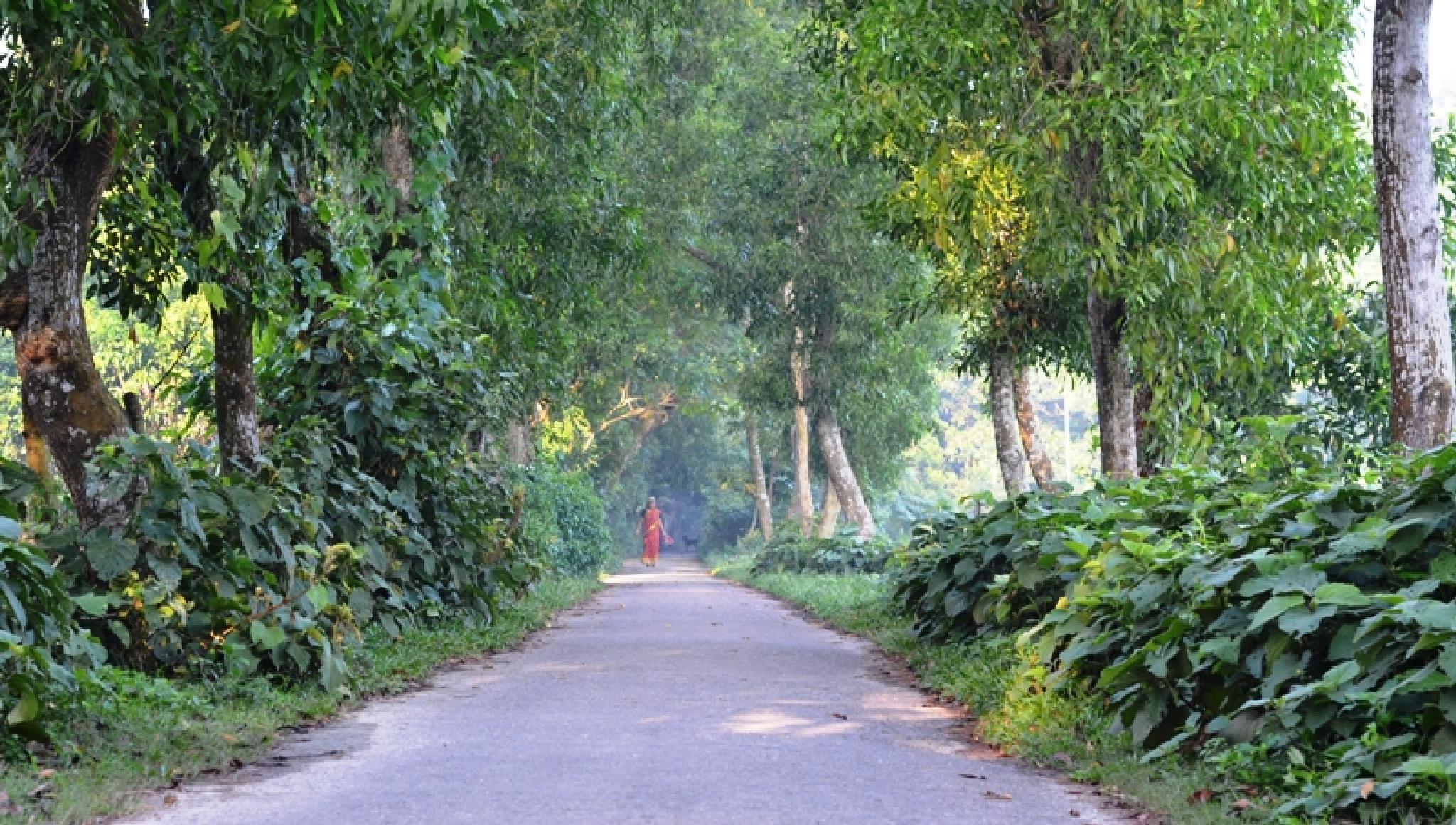 Woman vs Road  by apurahaman1