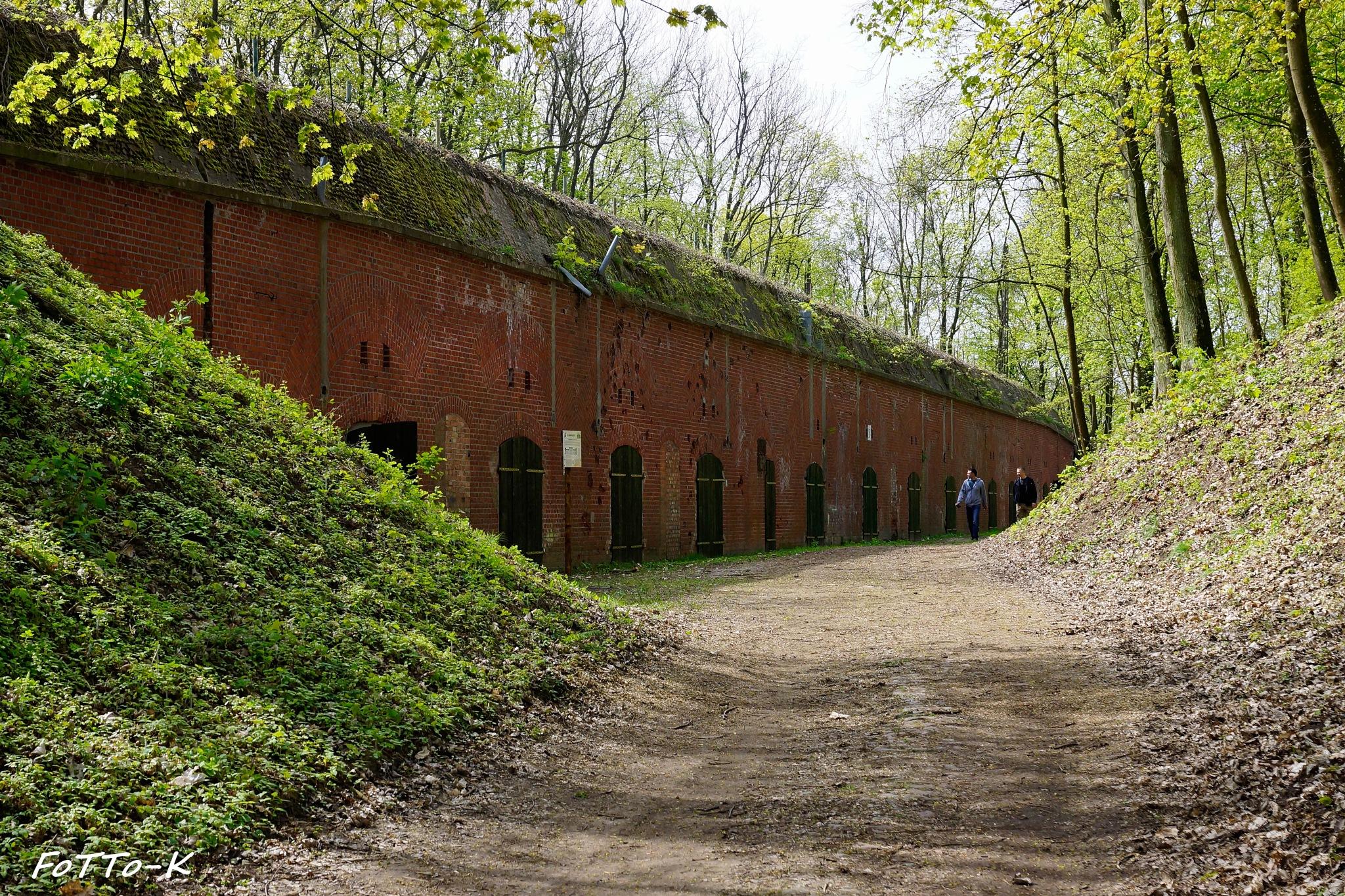 Fort by Karol