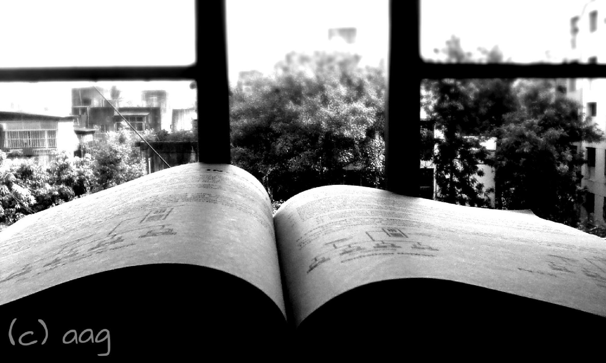studies #examtime by Anushka G
