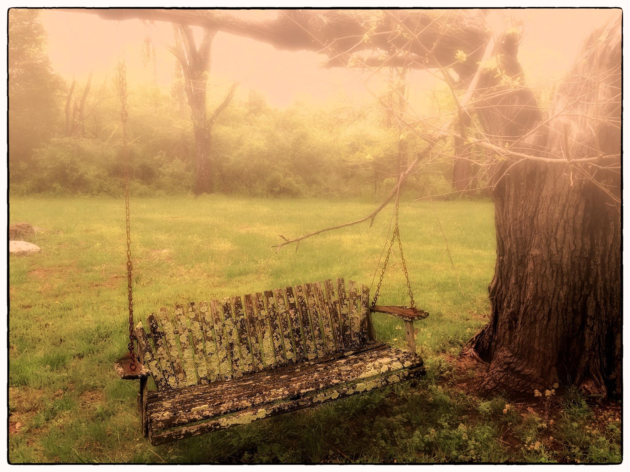 Recalling 1st love by imagemaker