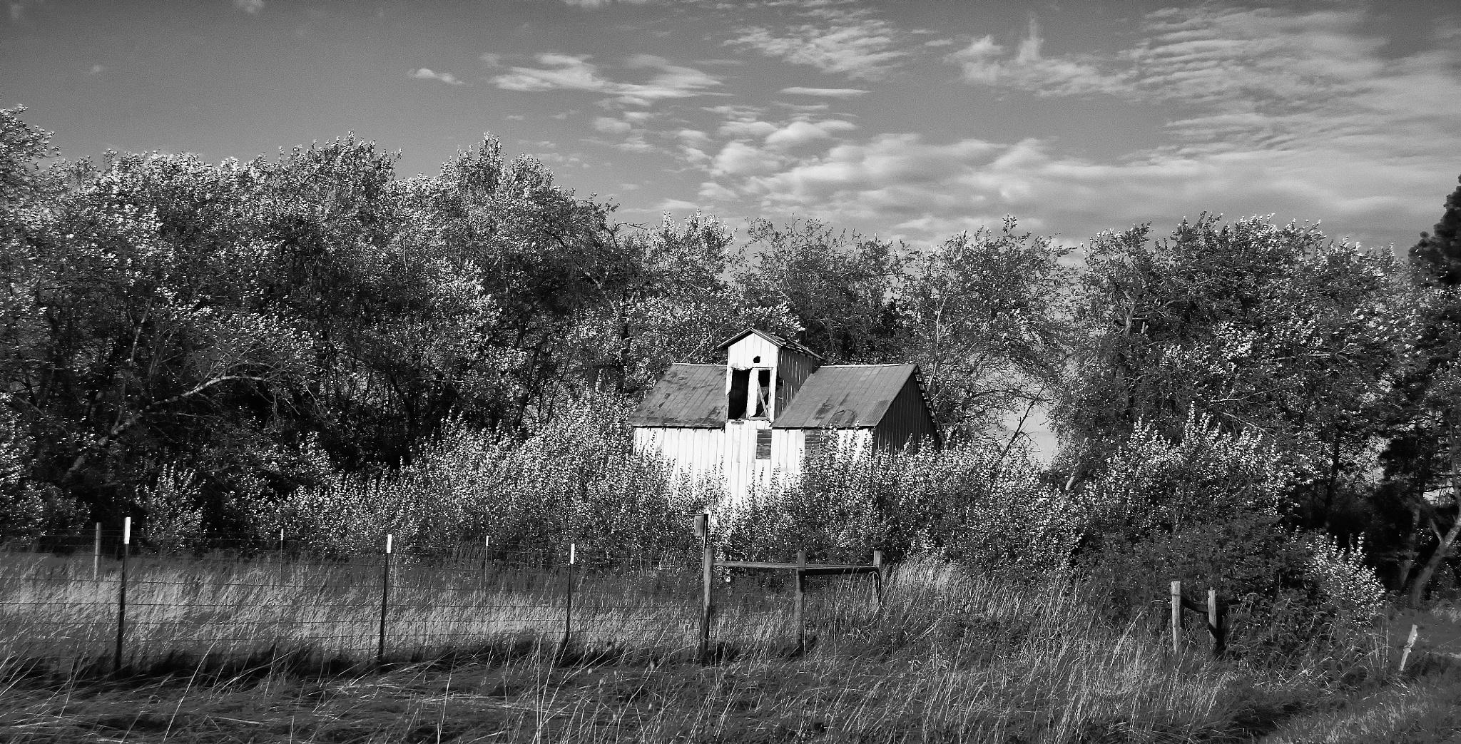Vacant Barn by kelvin.watkins
