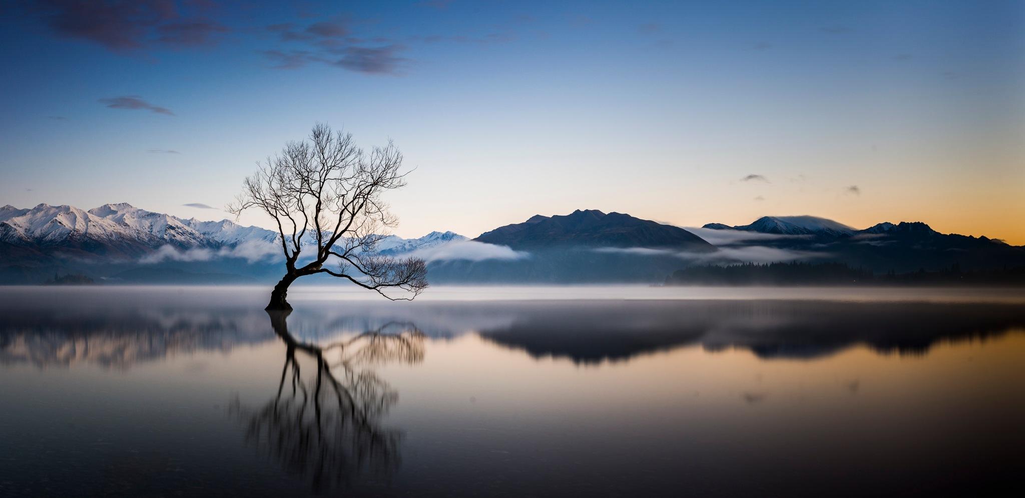 Sunrise at that Wanaka Tree by Neville Jones