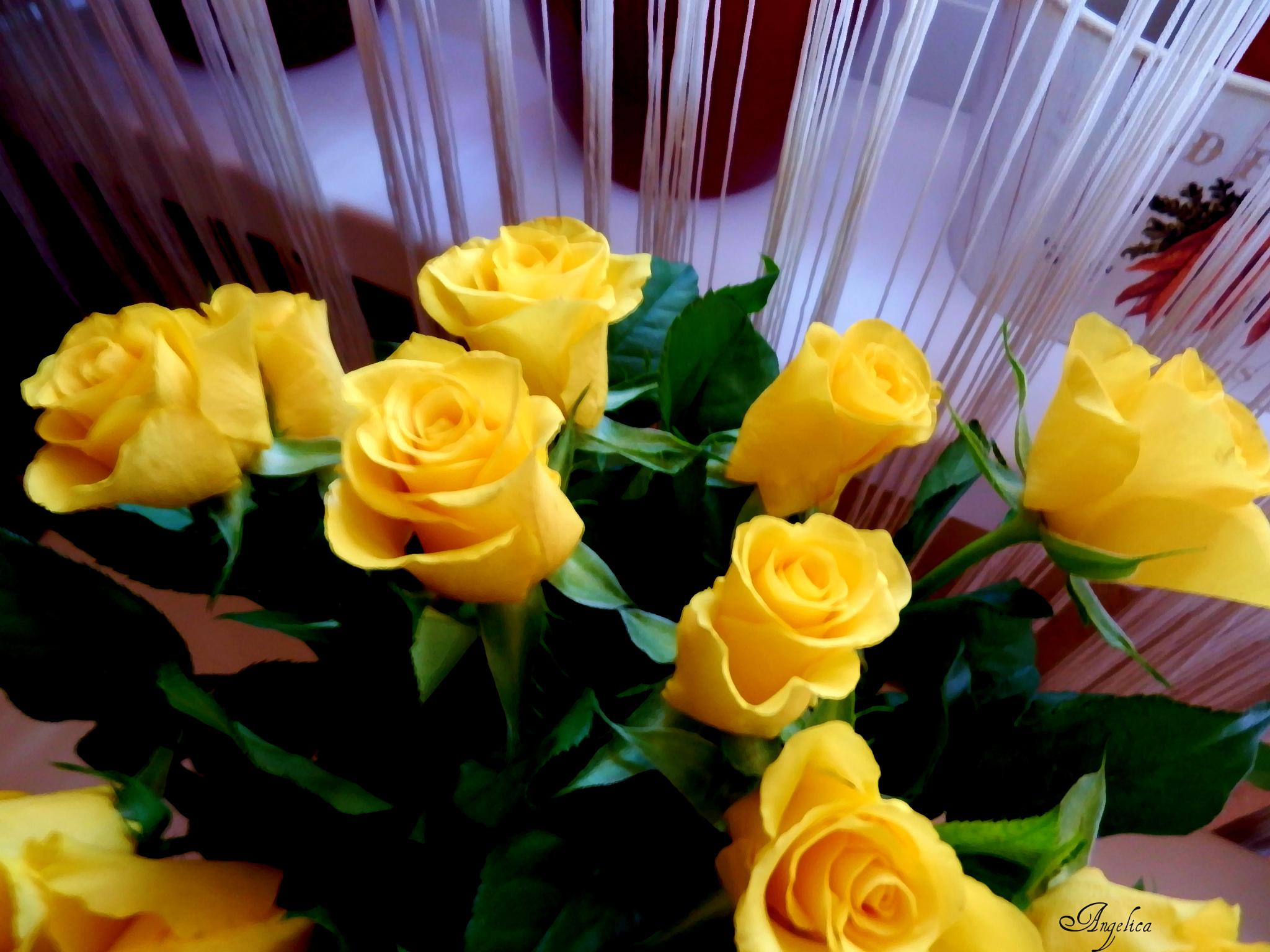 A bunch of yellow roses.  by Angelica