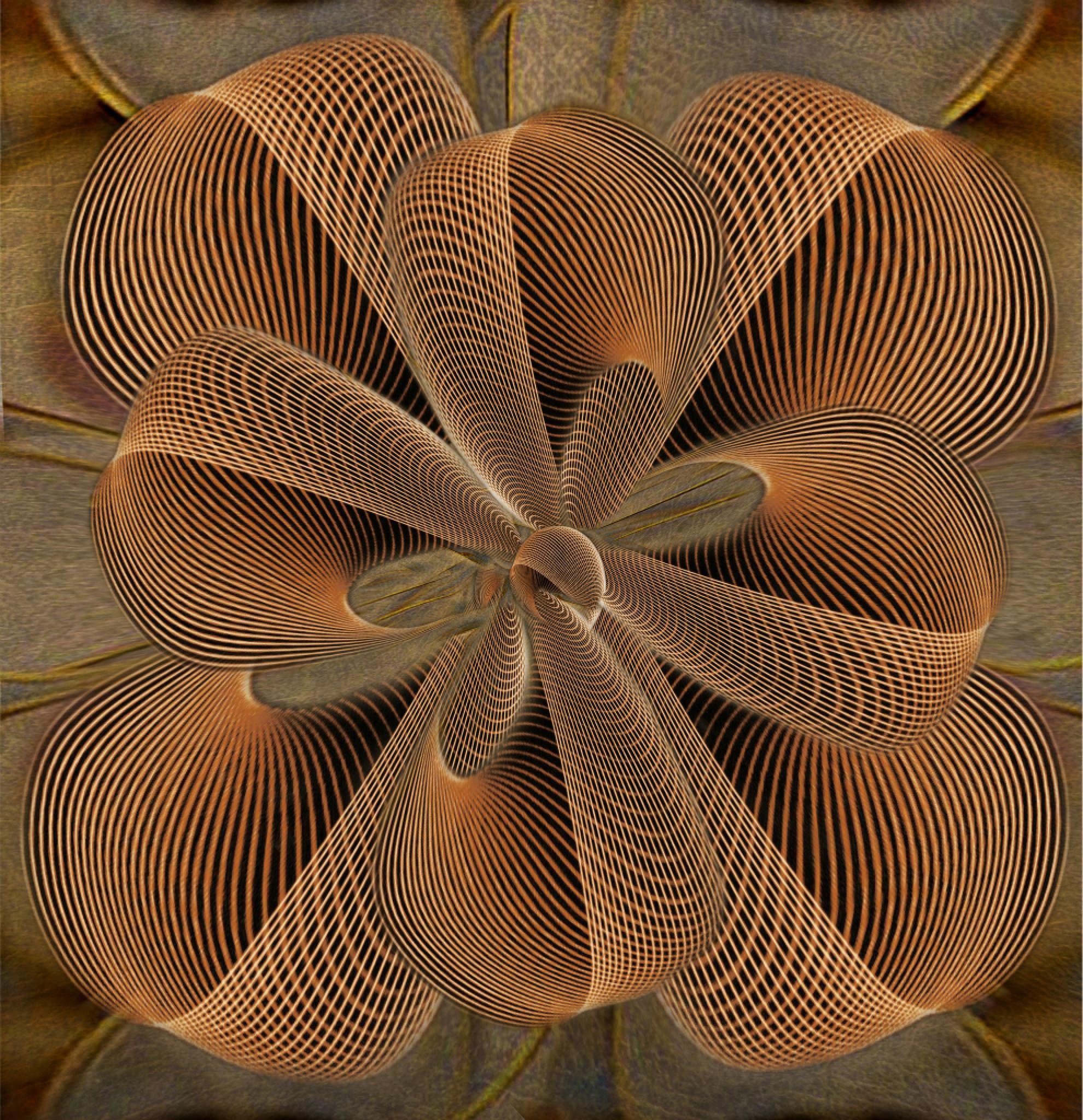 DESERT ROSE by carmenvelcic