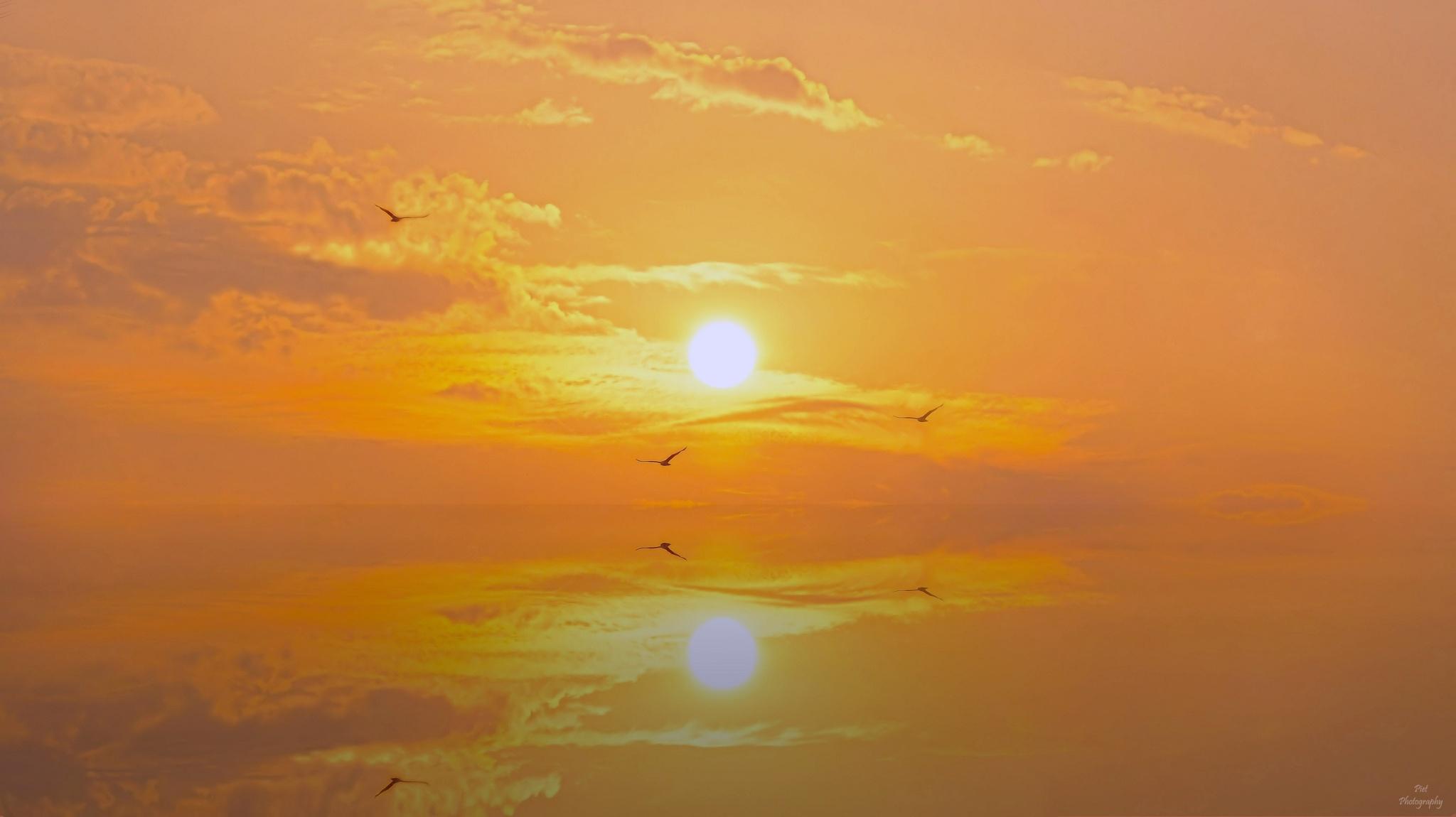 Dream Of Sunset... by PWaardenburg