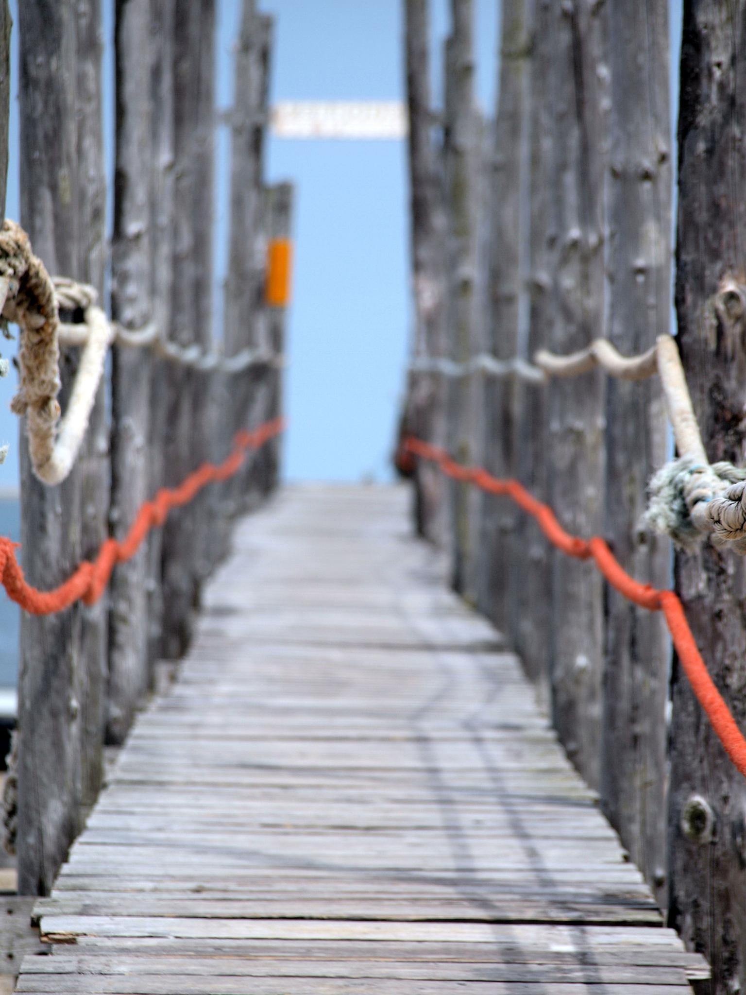 The Pier by Kristof Z.
