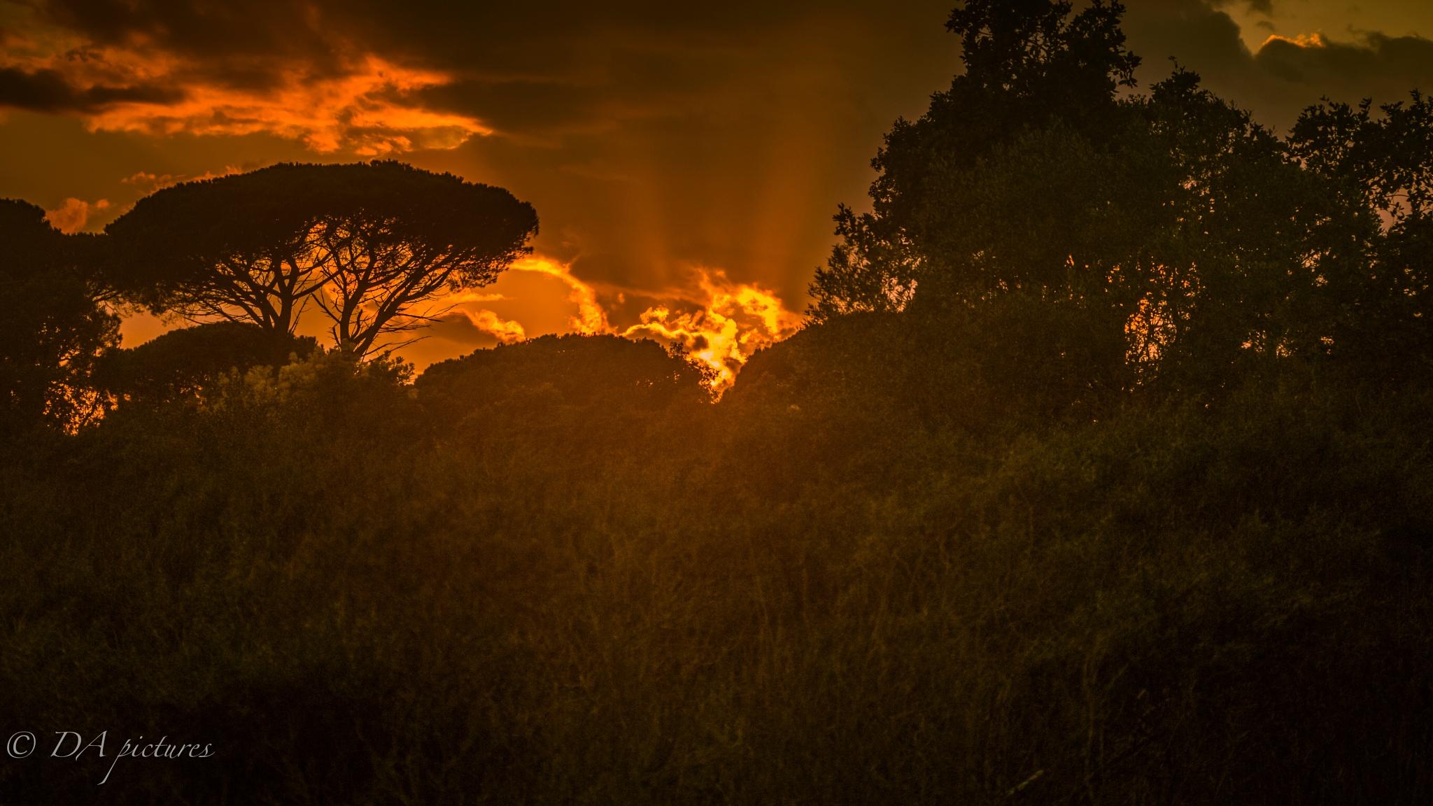 Cloudy sunset by djaffar adane