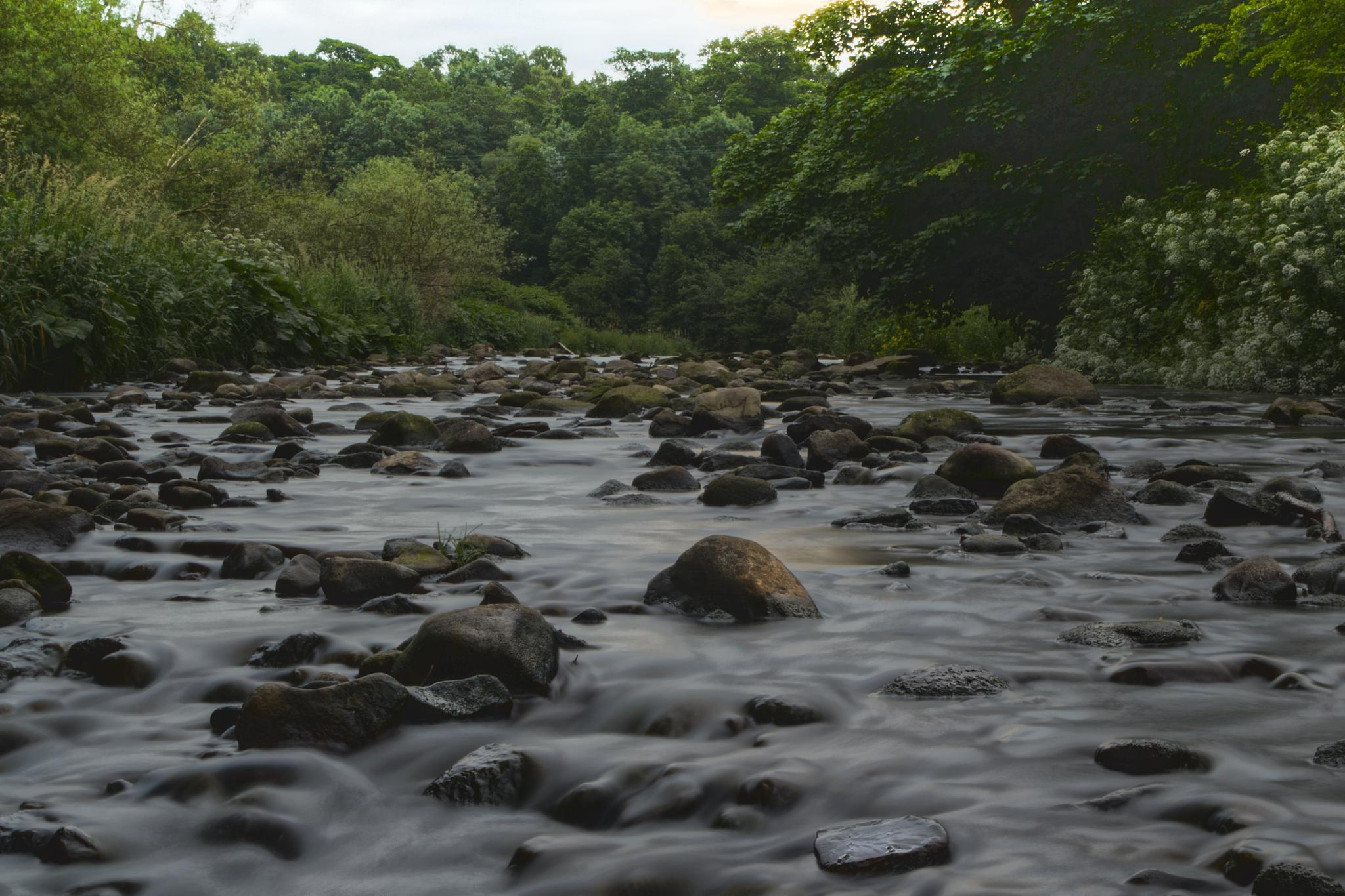 River Calder  by t.gwin