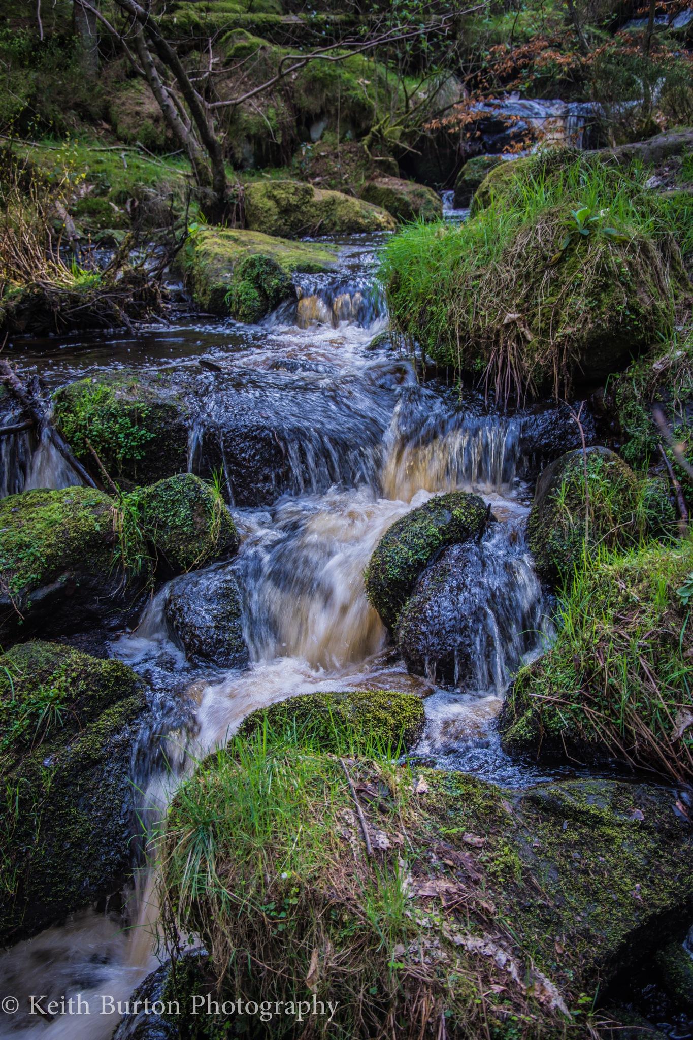 Wyming Brook  by Keith Burton