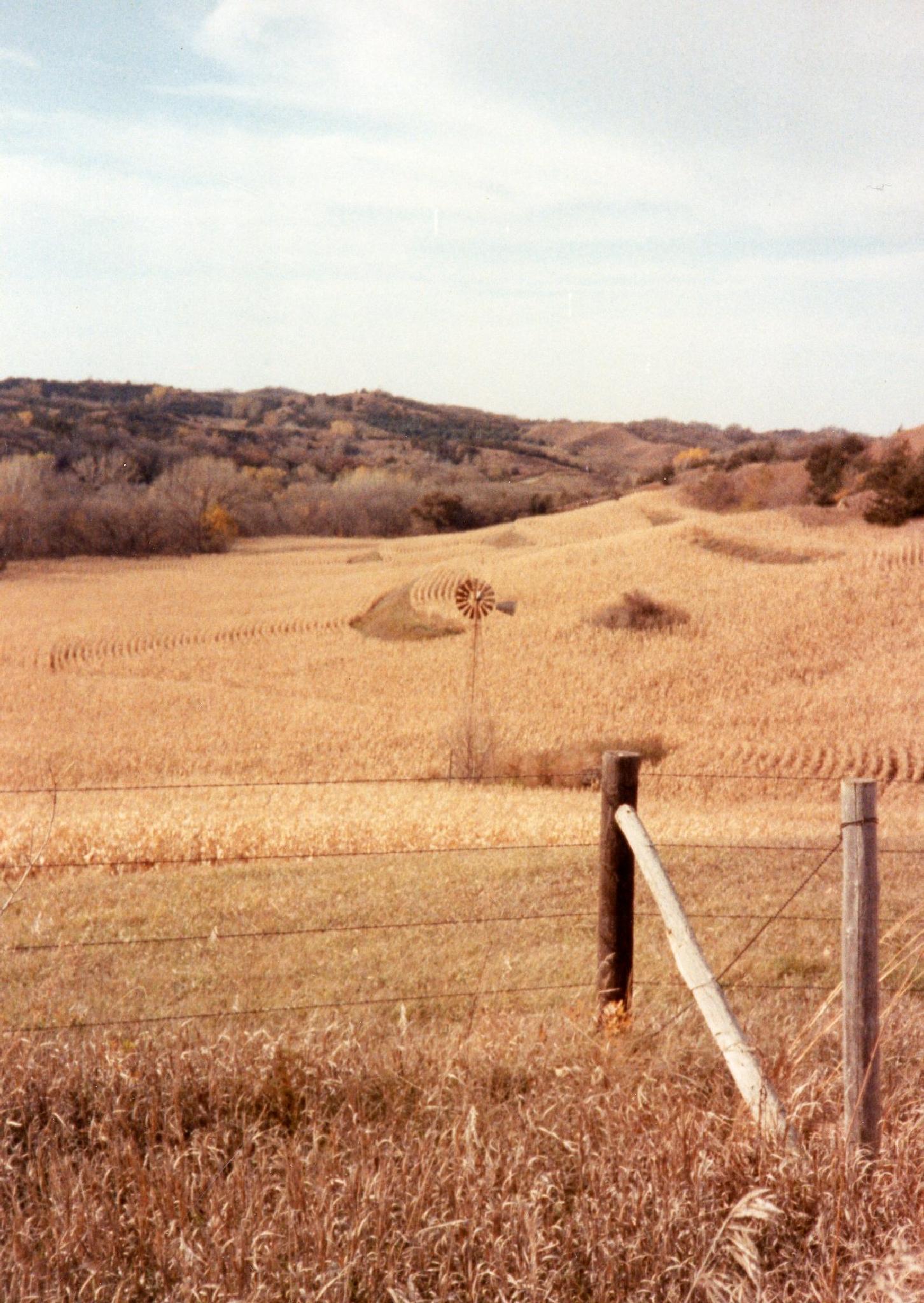 Nebraska farm land by monarch