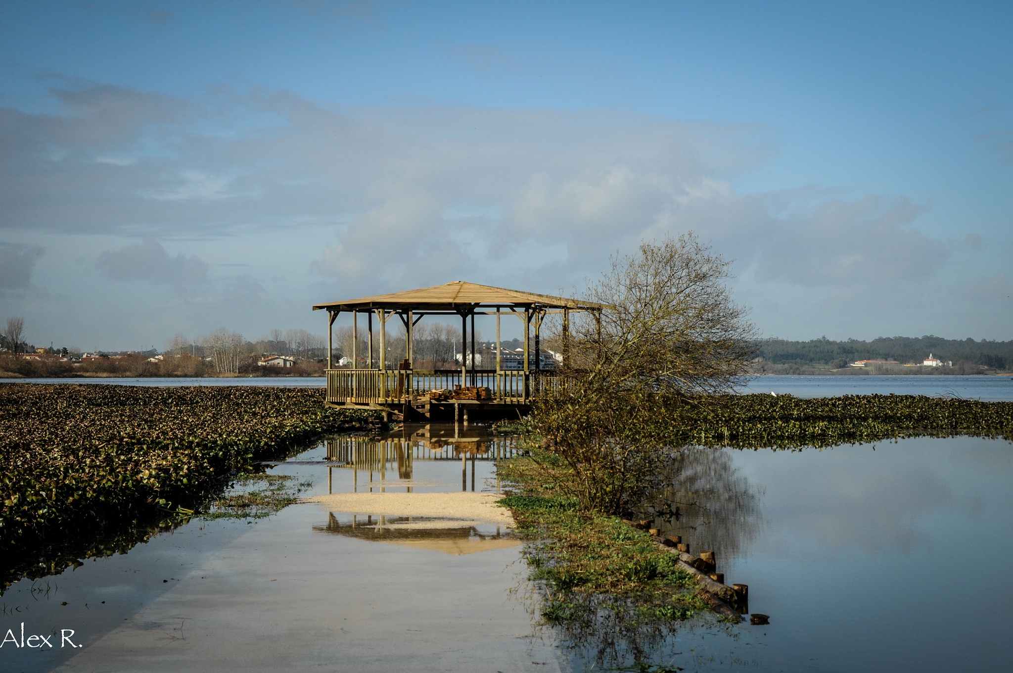The lake by Alex Rocio