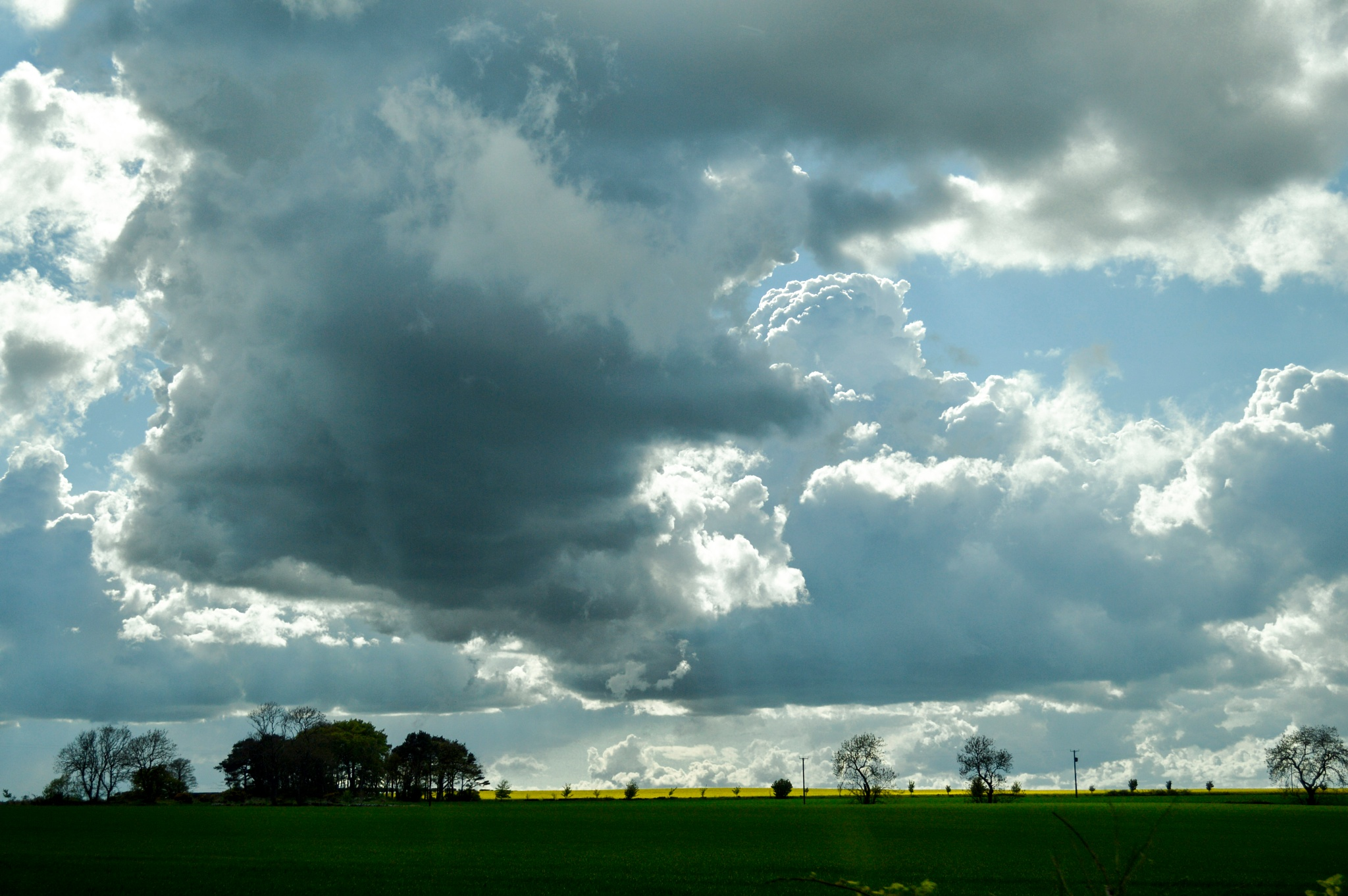 Photo in Landscape #sky #landscape #fields