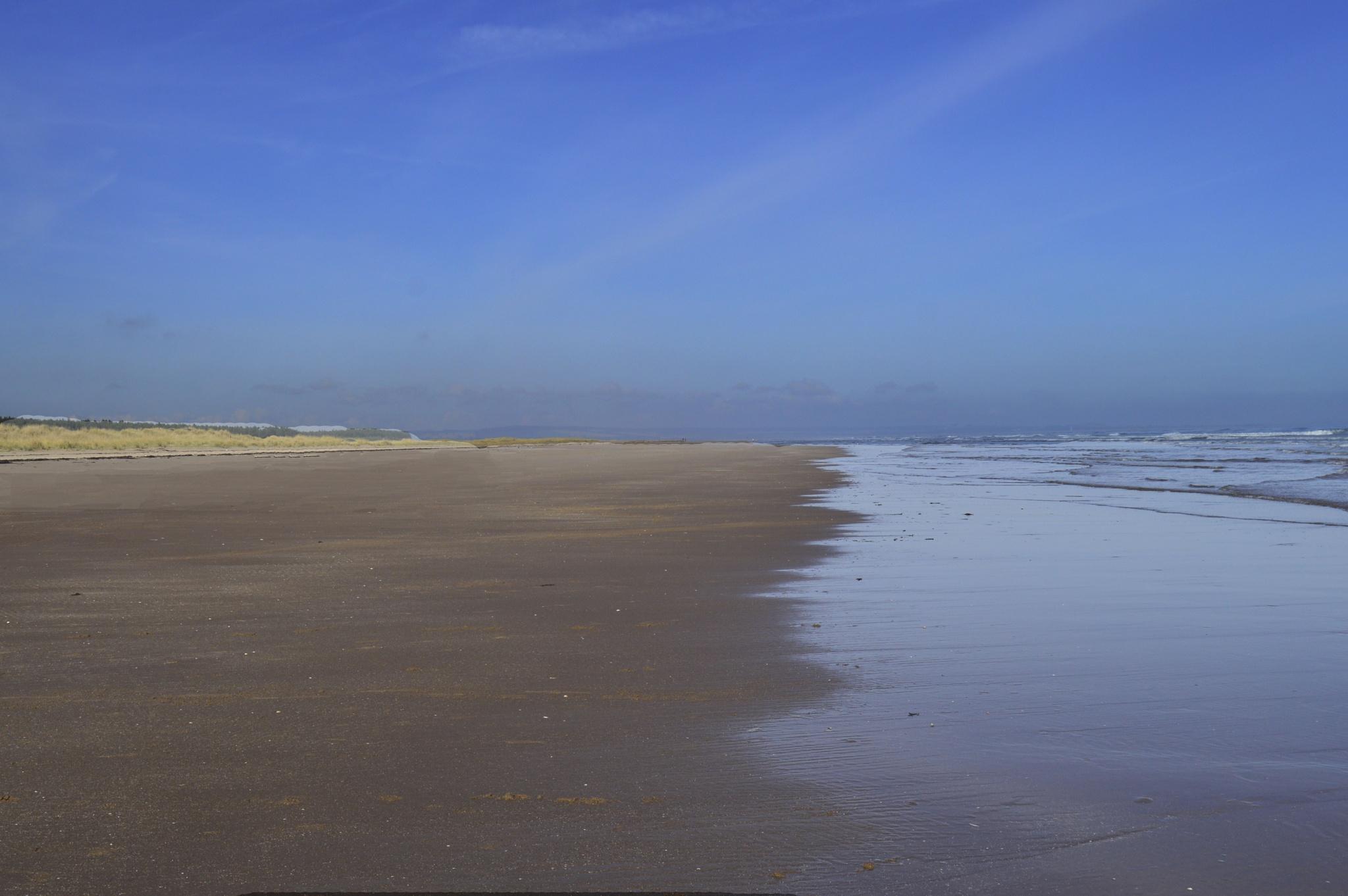 Lonely beach by John White