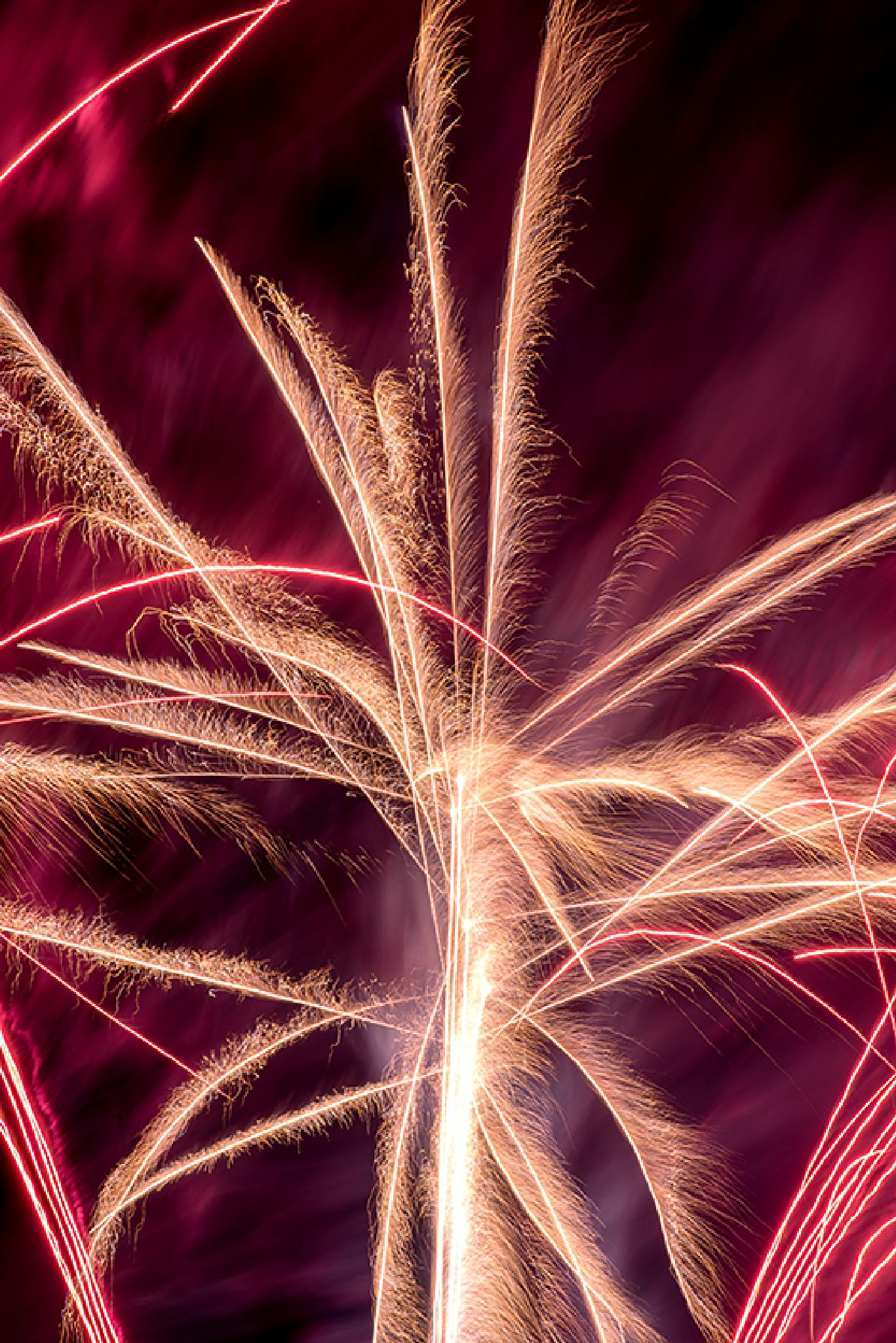 Fireworks Flare by David A. Dawson