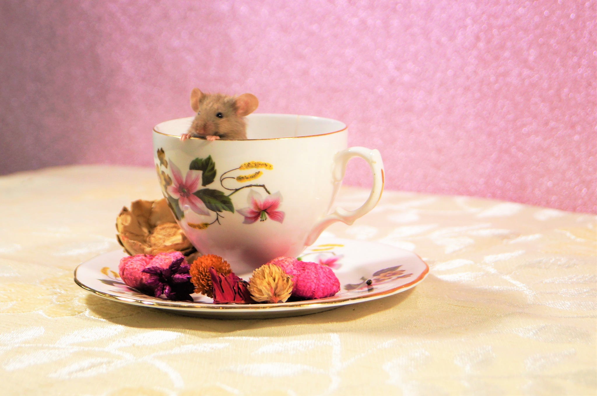 Mouse tea party by Blue Beard