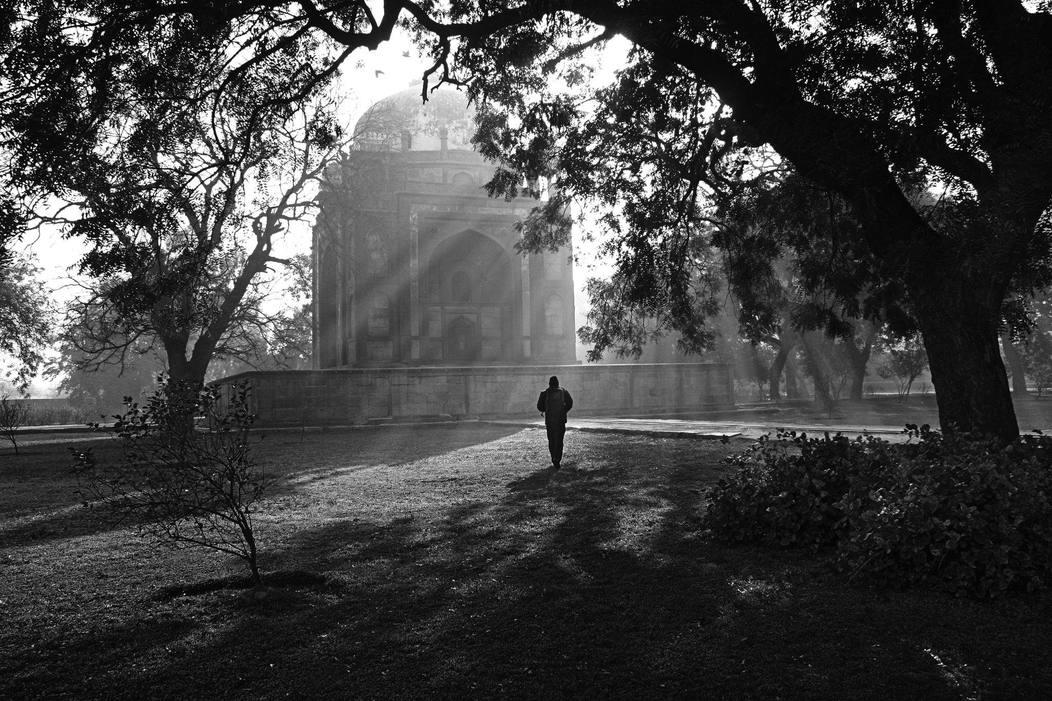 Photographer by Radhakrishna Rao