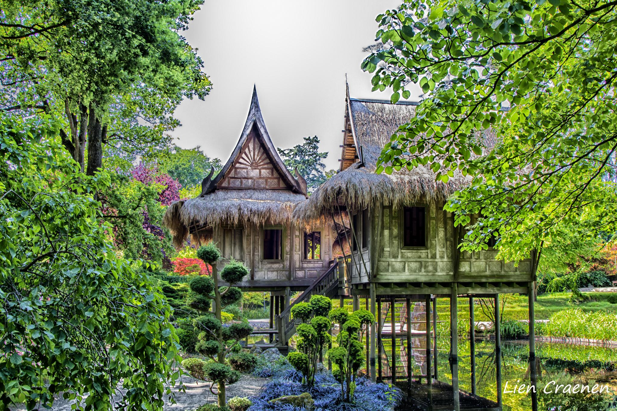 dreaming away in this little chinese garden by Lien Craenen