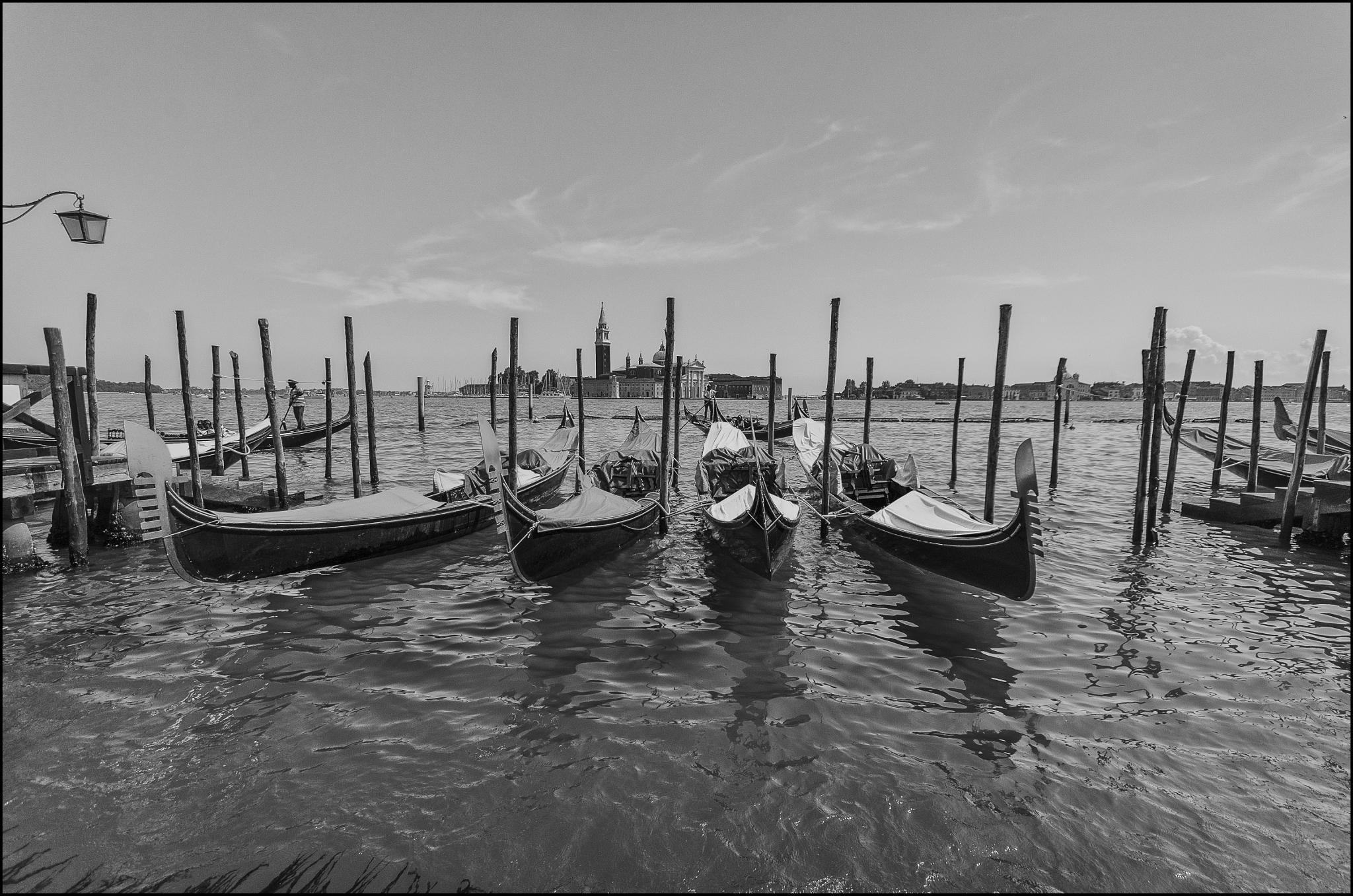 Gondolas by D Whitehead