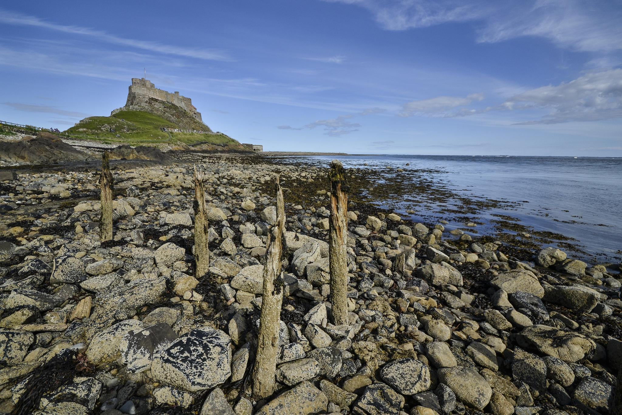 Photo in Landscape #holy island #northumberland #lindisfarne #casle #sea #coast
