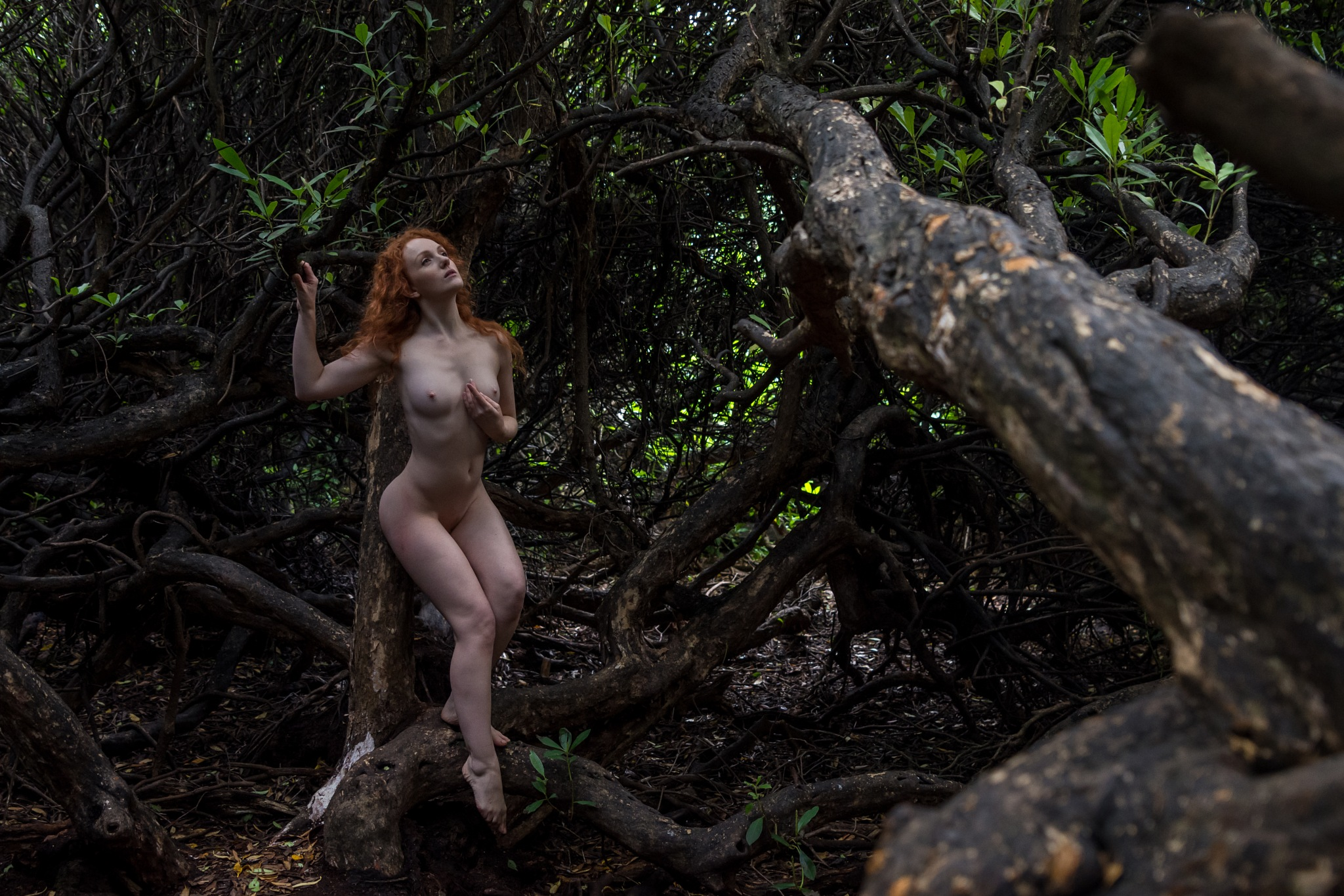 Nude in labyrinth by D Whitehead