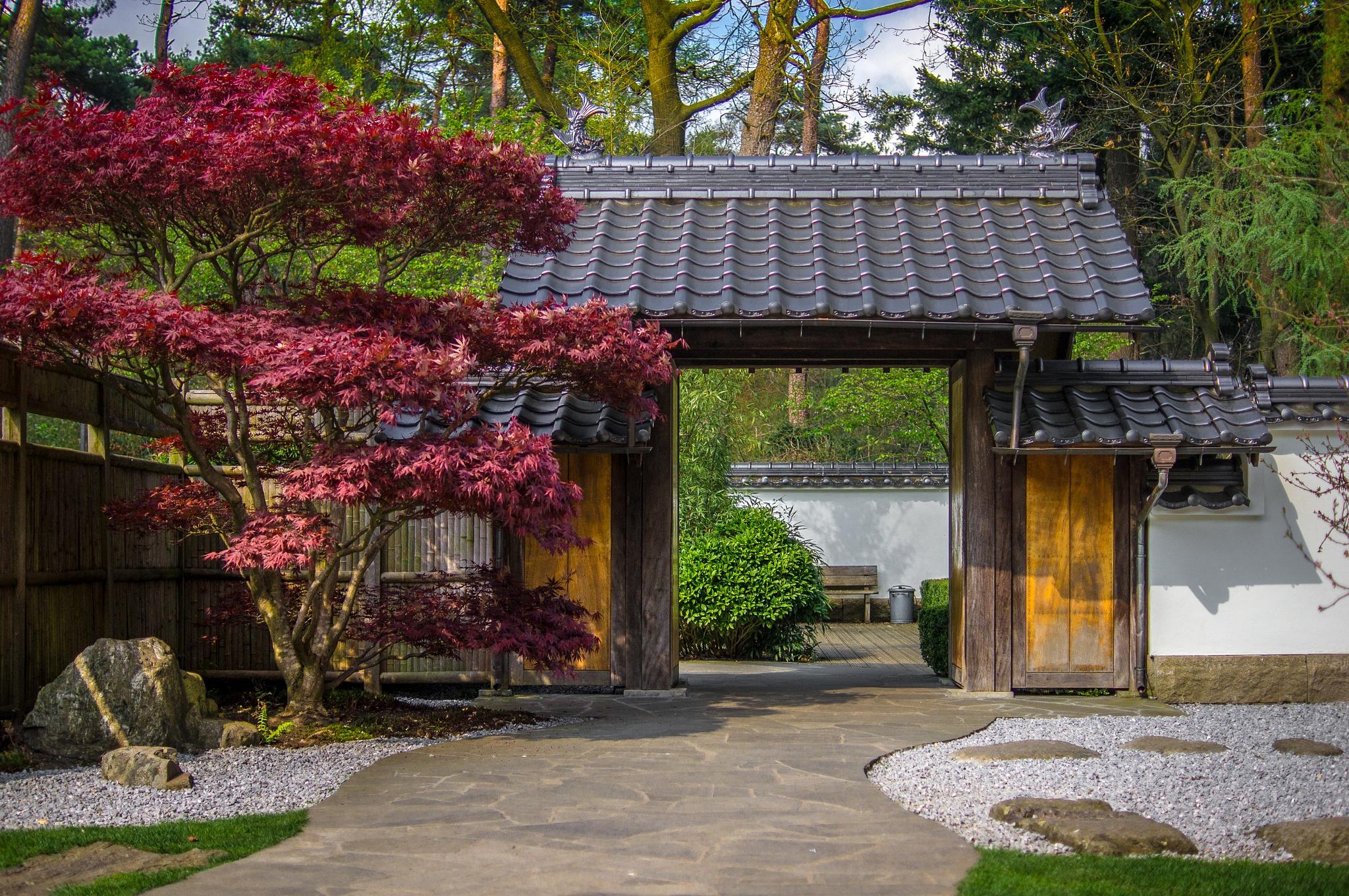 Japanese Garden by Matt H. Imaging