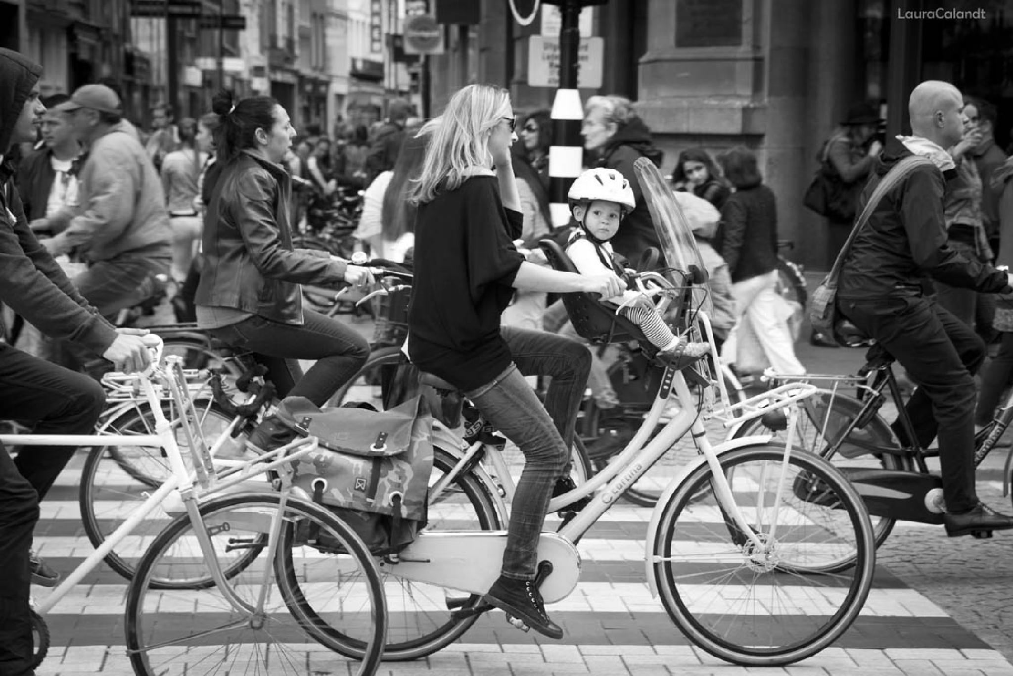 All the bikes by Laura Calandt