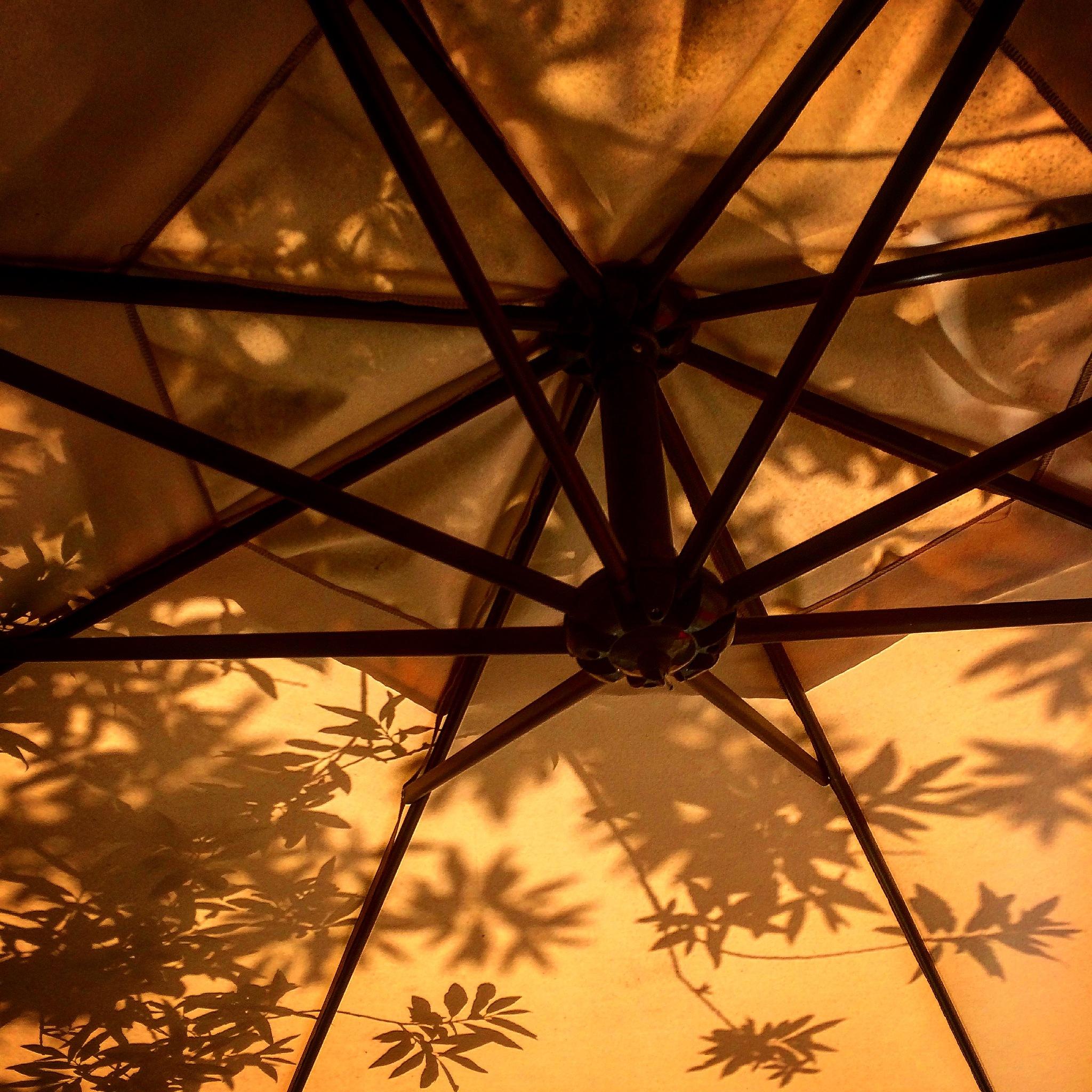 #underrheumbrella by Paula haapalahti