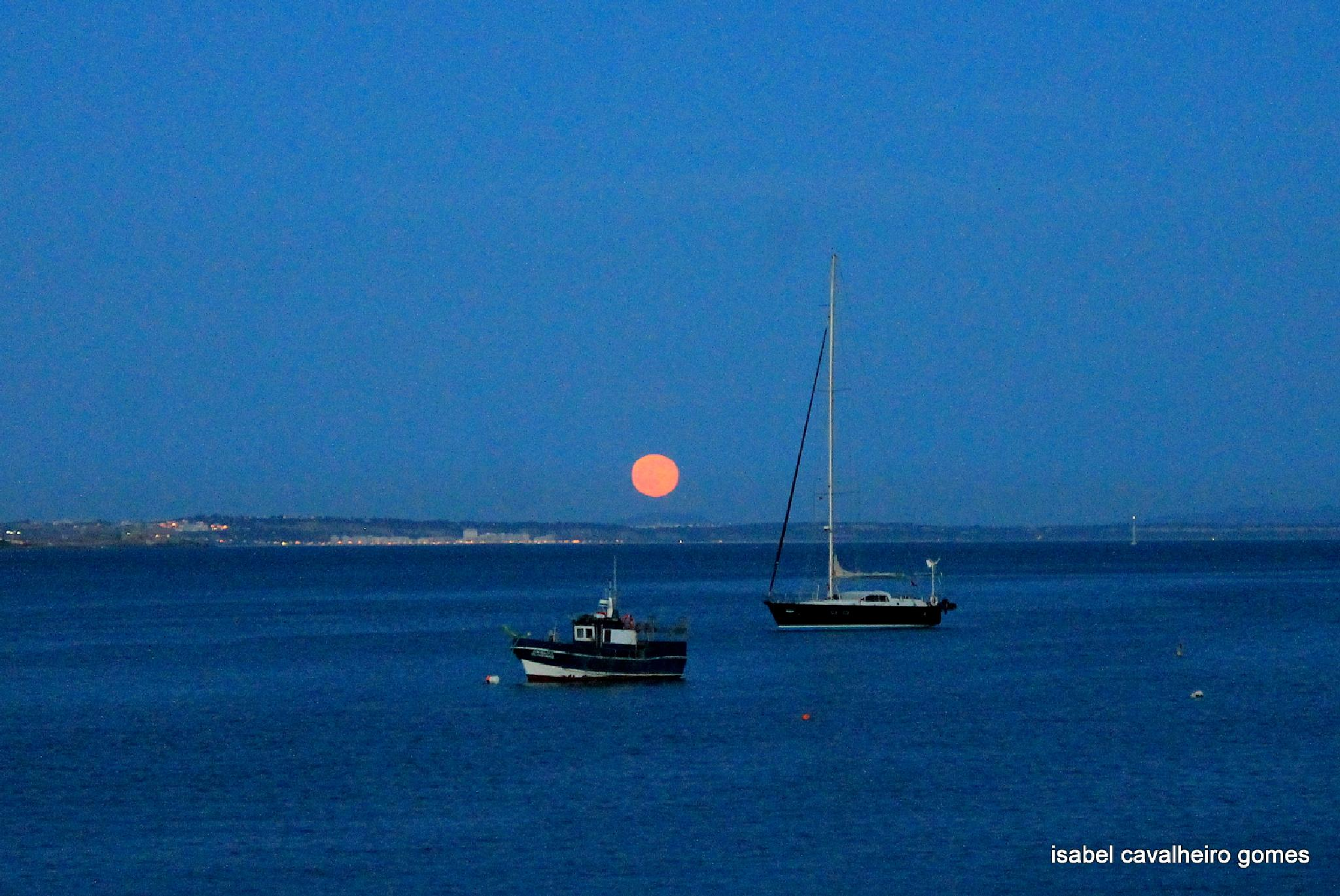 full moon raising by isabel cavalheiro gomes